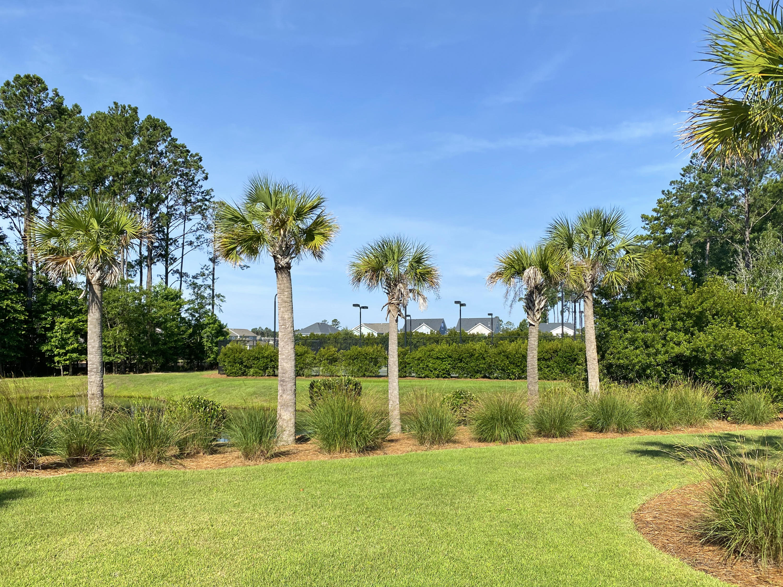 Carolina Park Homes For Sale - 1418 Crane Creek, Mount Pleasant, SC - 19