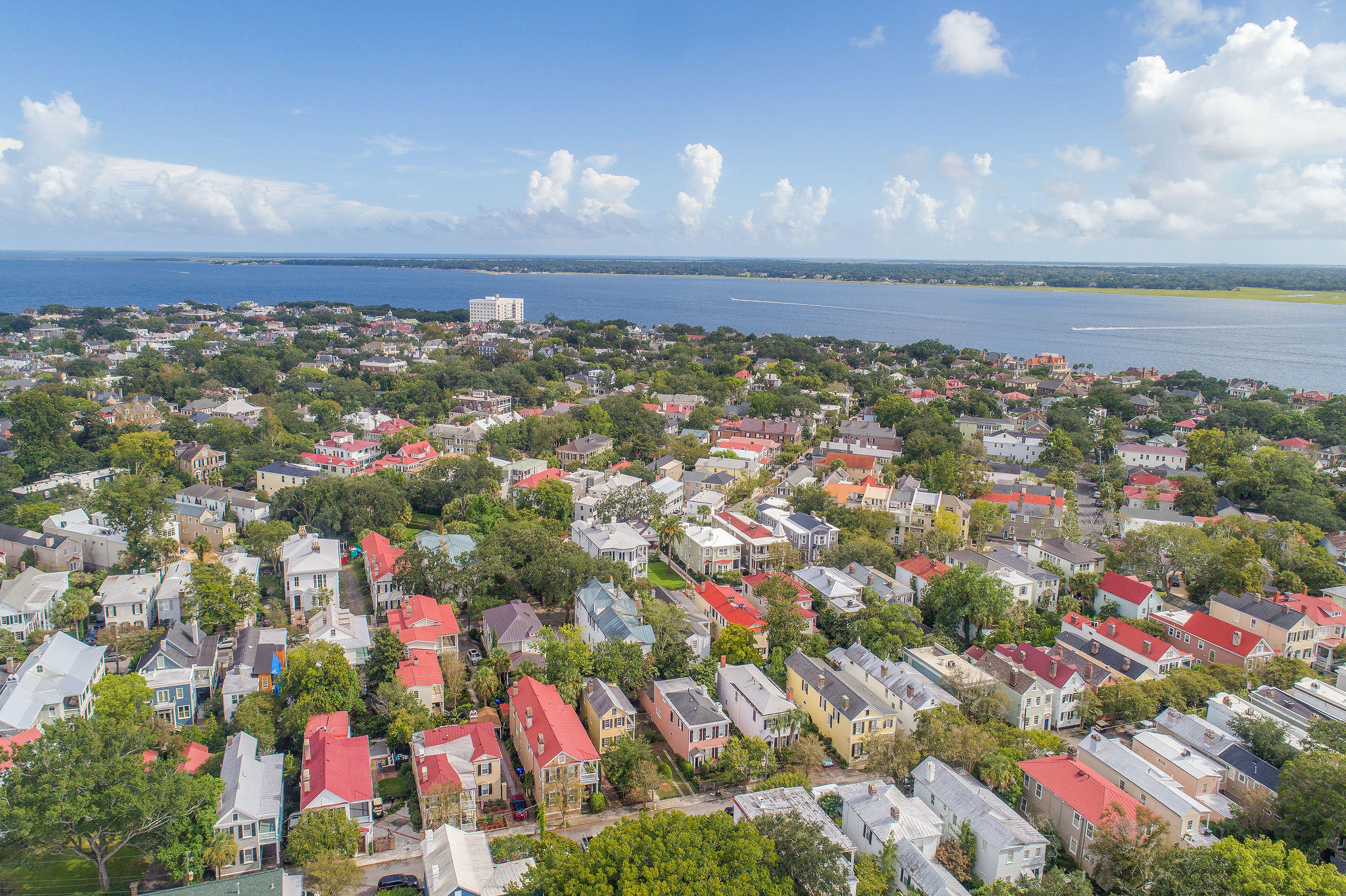 South of Broad Homes For Sale - 40 Savage, Charleston, SC - 27