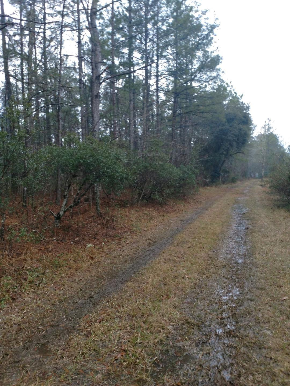 131 Hendorrich Trail Huger, SC 29450
