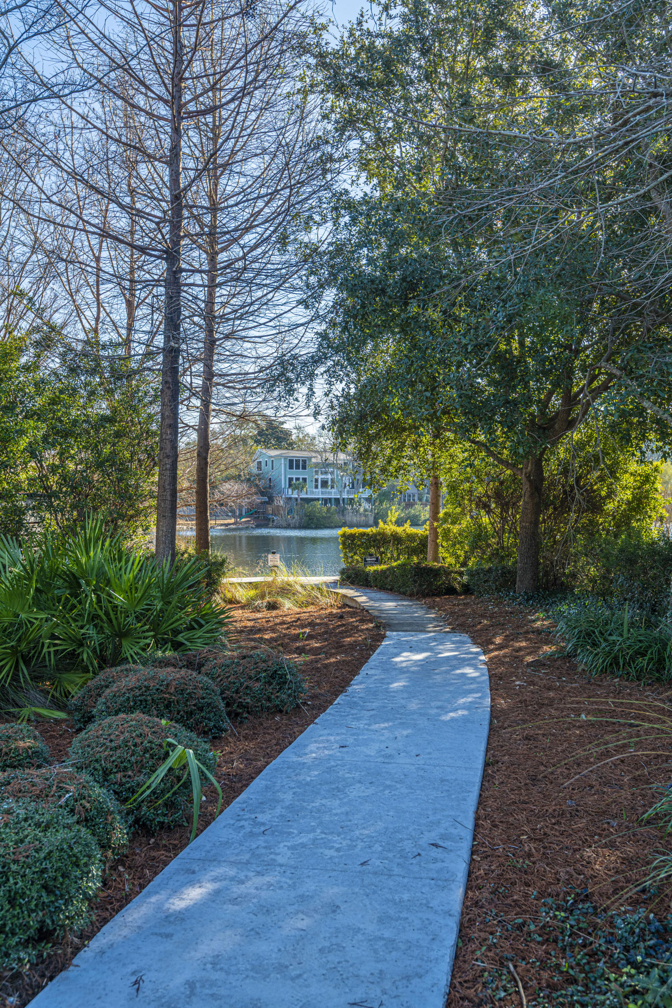 Watermark Homes For Sale - 1445 Lettered Olive, Mount Pleasant, SC - 1