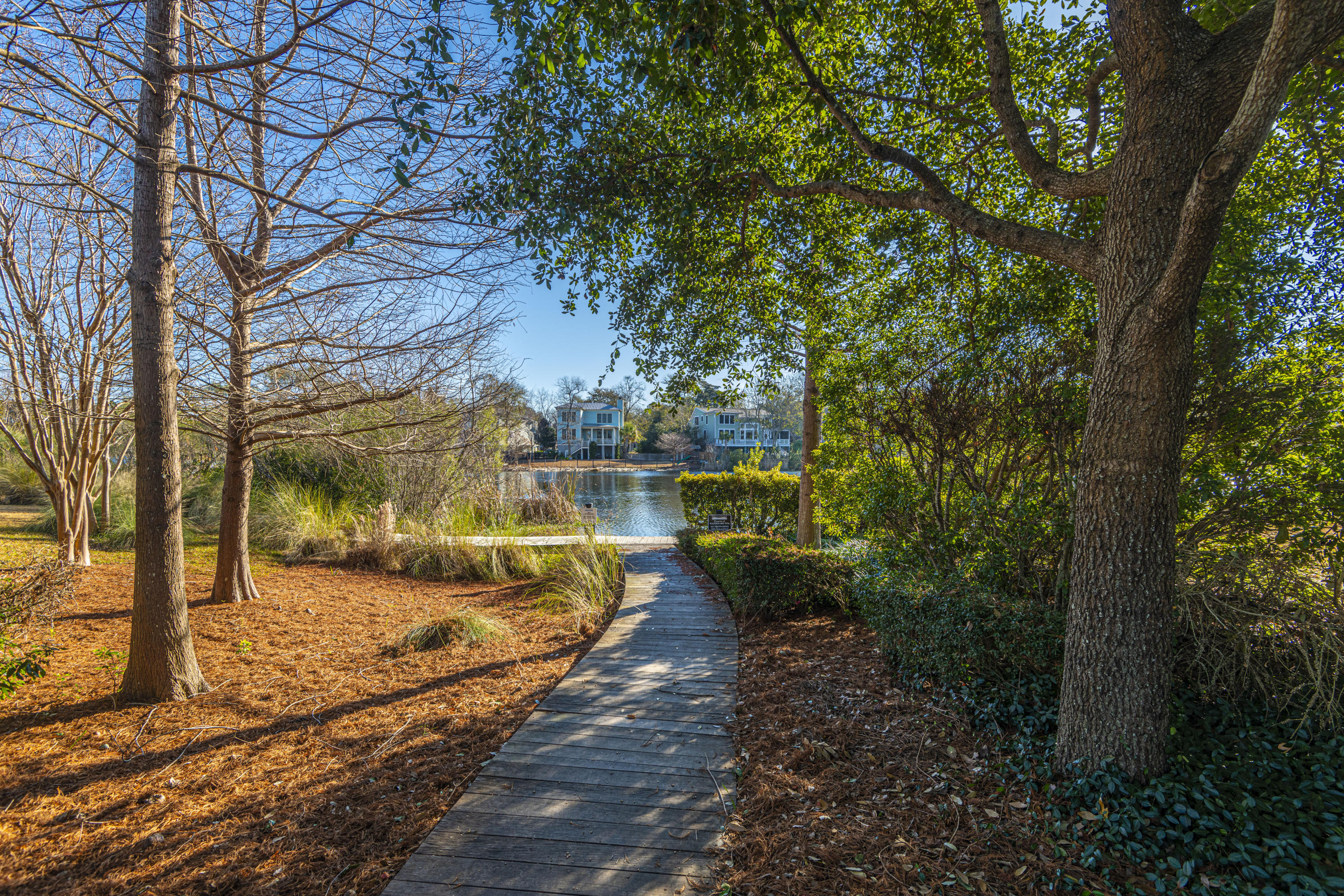 Watermark Homes For Sale - 1445 Lettered Olive, Mount Pleasant, SC - 3