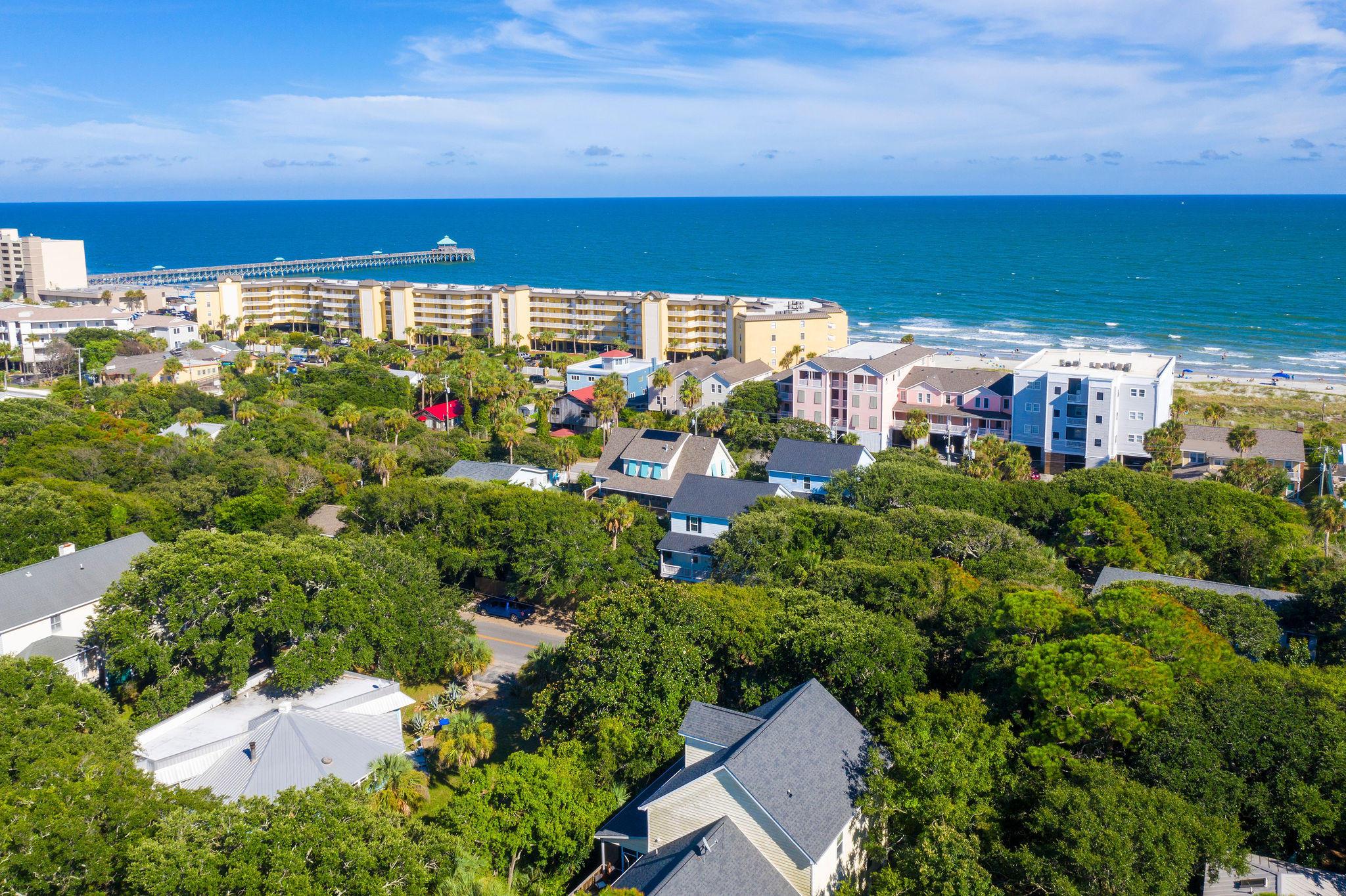 None Homes For Sale - 214 Cooper, Folly Beach, SC - 4