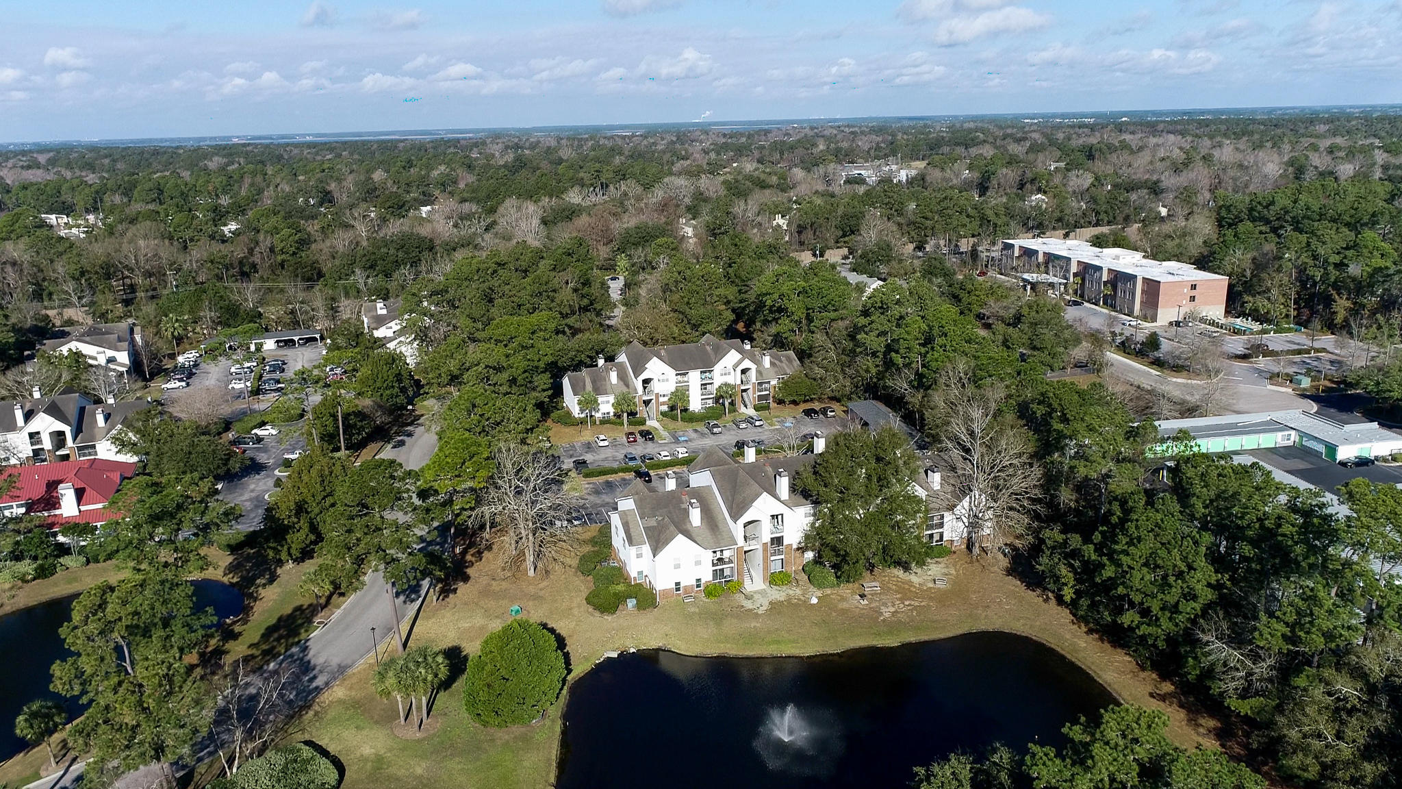 The Meridian Homes For Sale - 2011 Hwy 17, Mount Pleasant, SC - 11