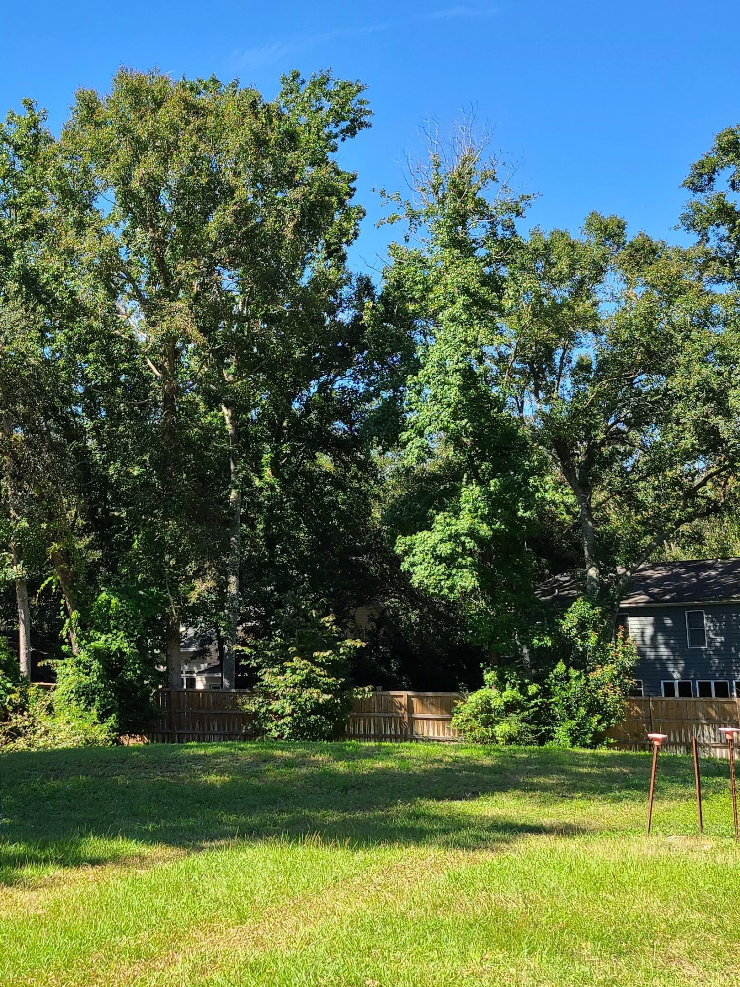 1218 Clonmel Place Mount Pleasant, SC 29464