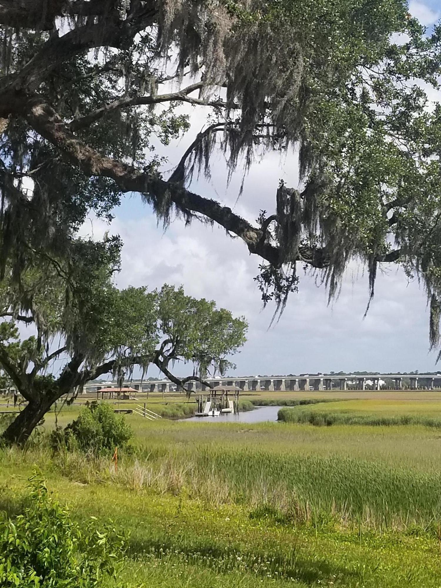 The Settlement Homes For Sale - 1039 Teracotta Dr, Charleston, SC - 5