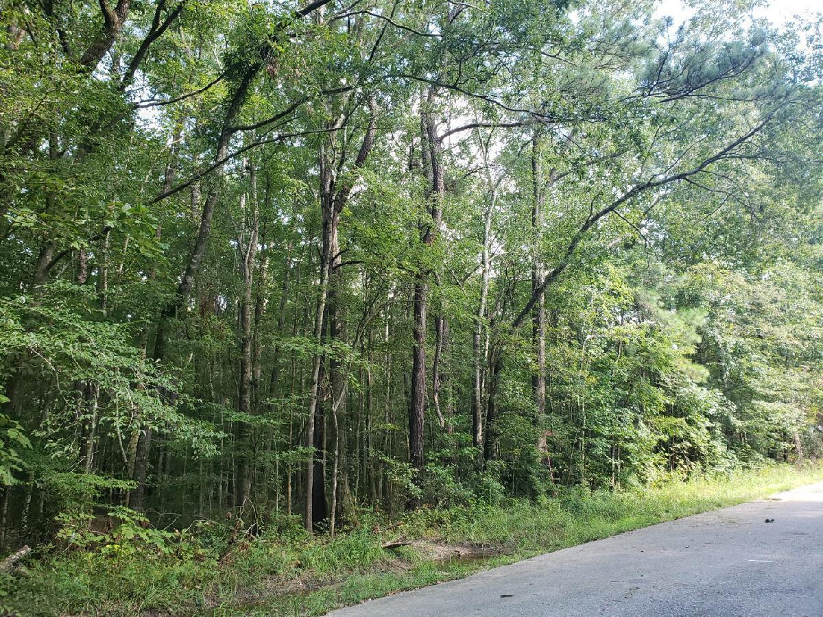 236 Pecan Drive Summerville, SC 29483