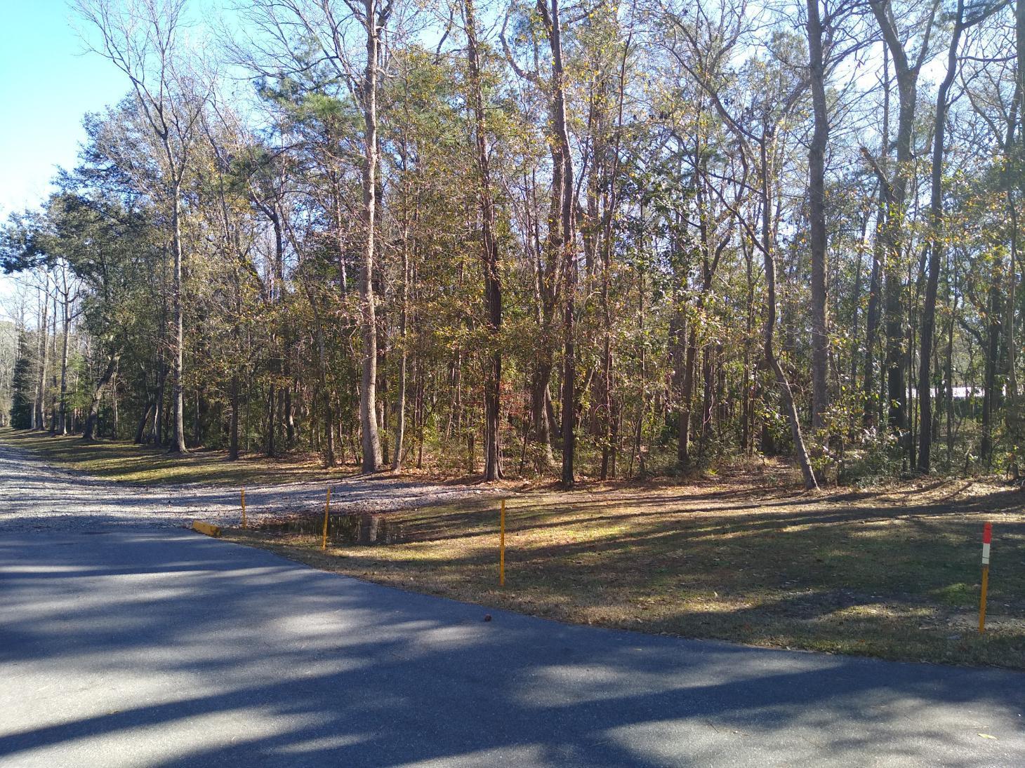 2312 Byrd Farm Rd Road Charleston, SC 29414