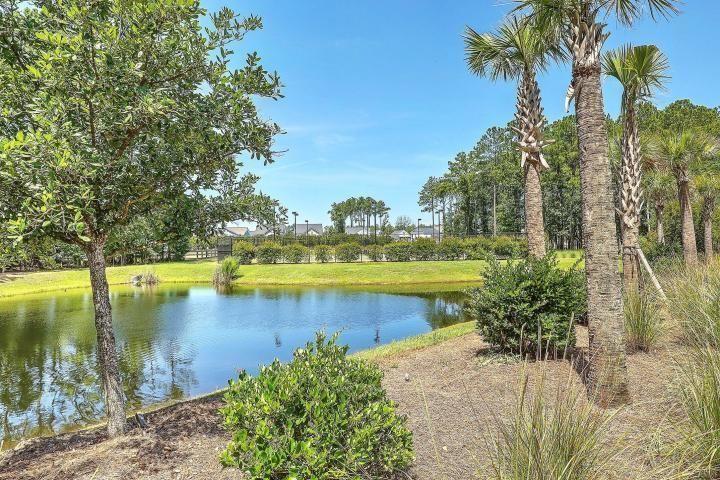 Carolina Park Homes For Sale - 1466 Gunnison, Mount Pleasant, SC - 14