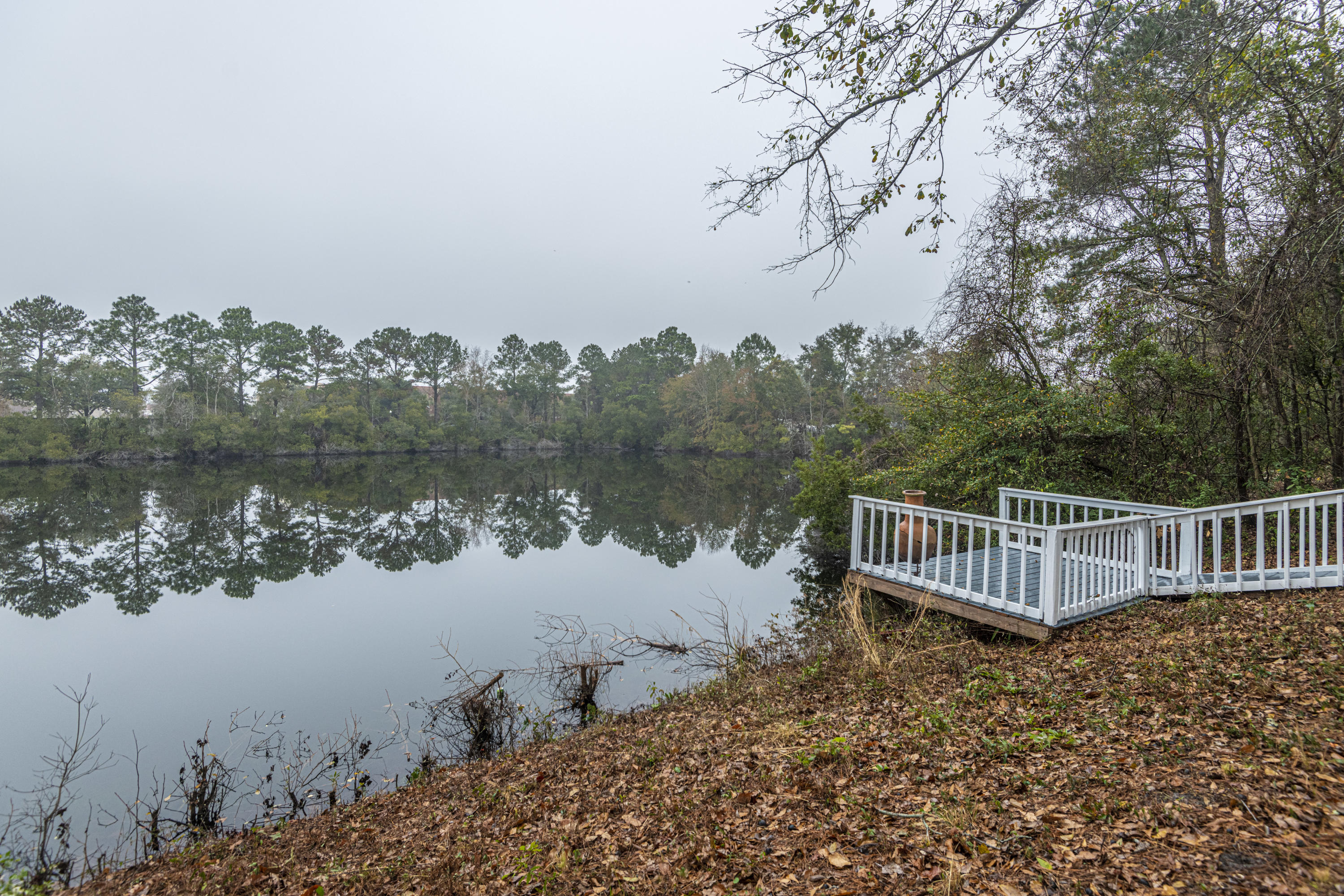 Hidden Lakes Homes For Sale - 1273 Waterfront, Mount Pleasant, SC - 0