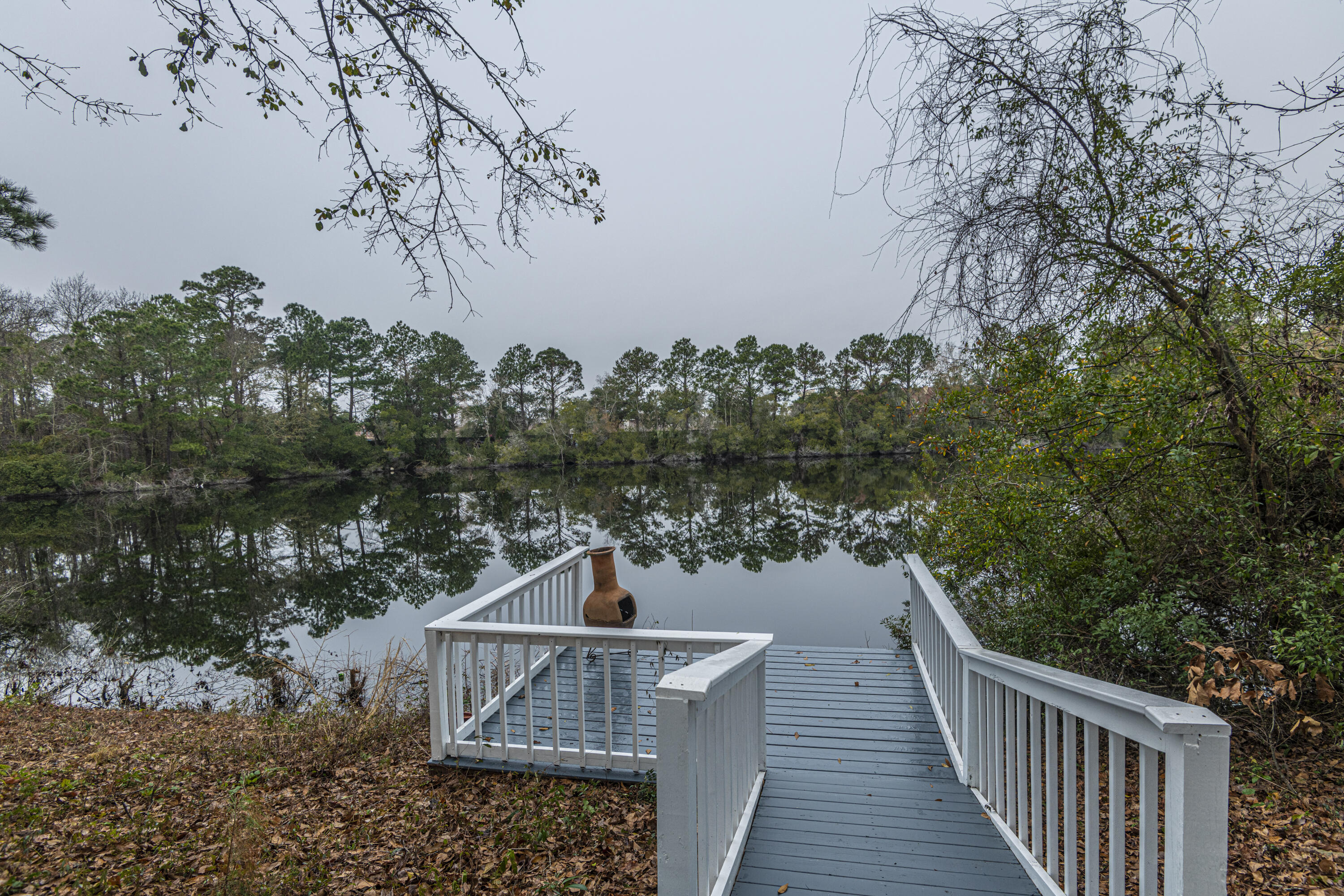 Hidden Lakes Homes For Sale - 1273 Waterfront, Mount Pleasant, SC - 4