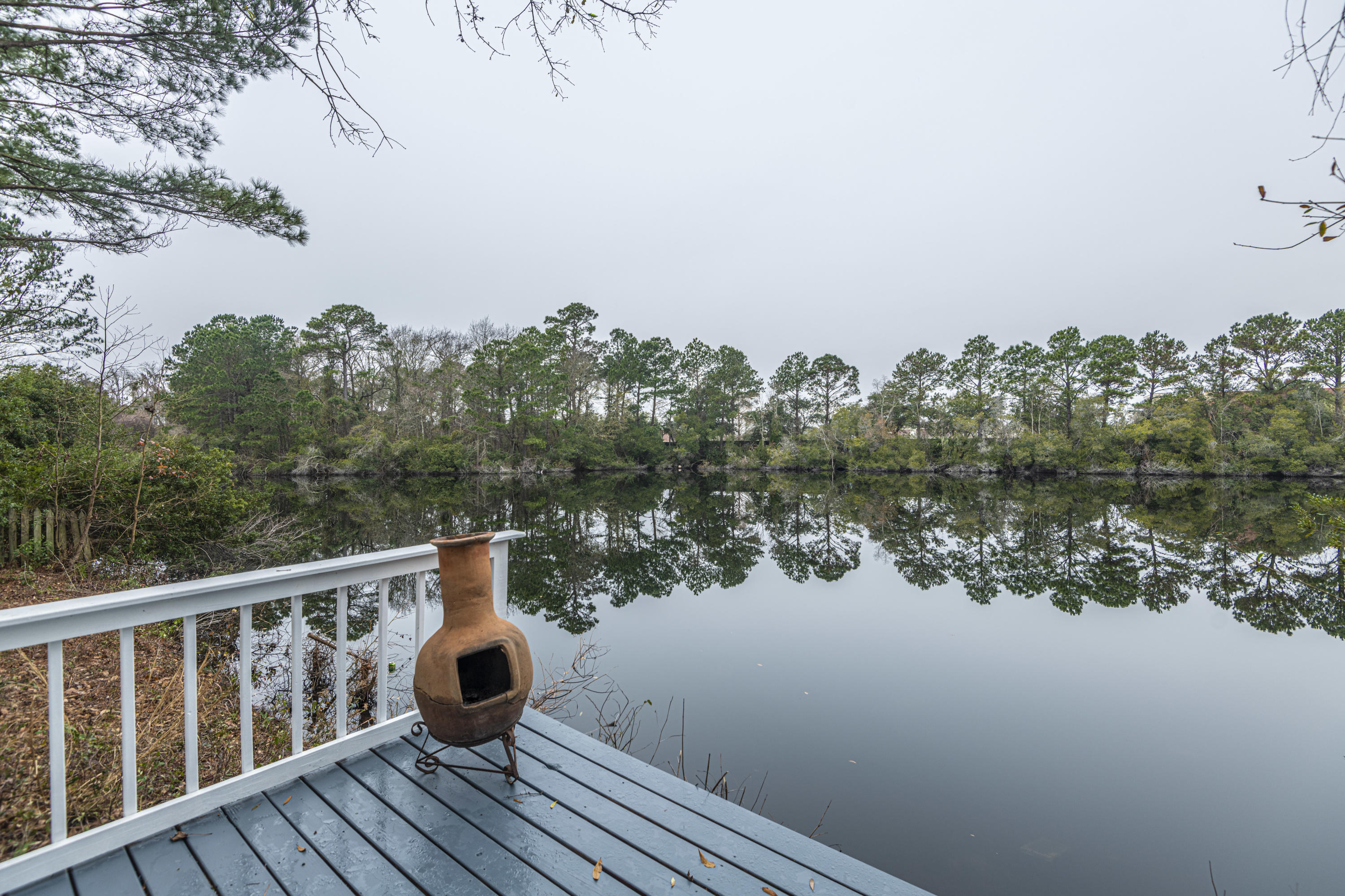 Hidden Lakes Homes For Sale - 1273 Waterfront, Mount Pleasant, SC - 2