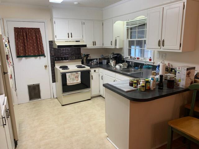 Old Mt Pleasant Homes For Sale - 1421 Glencoe, Mount Pleasant, SC - 4