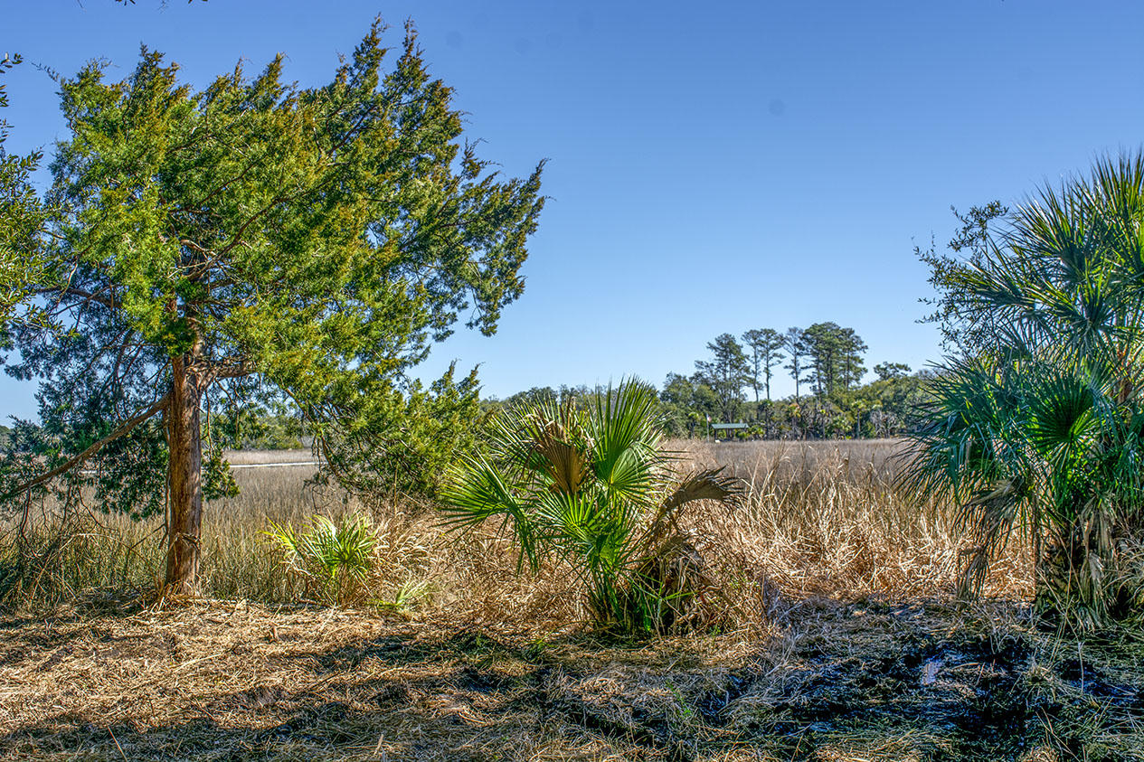 61 Palmetto Pointe Lane Edisto Island, SC 29438
