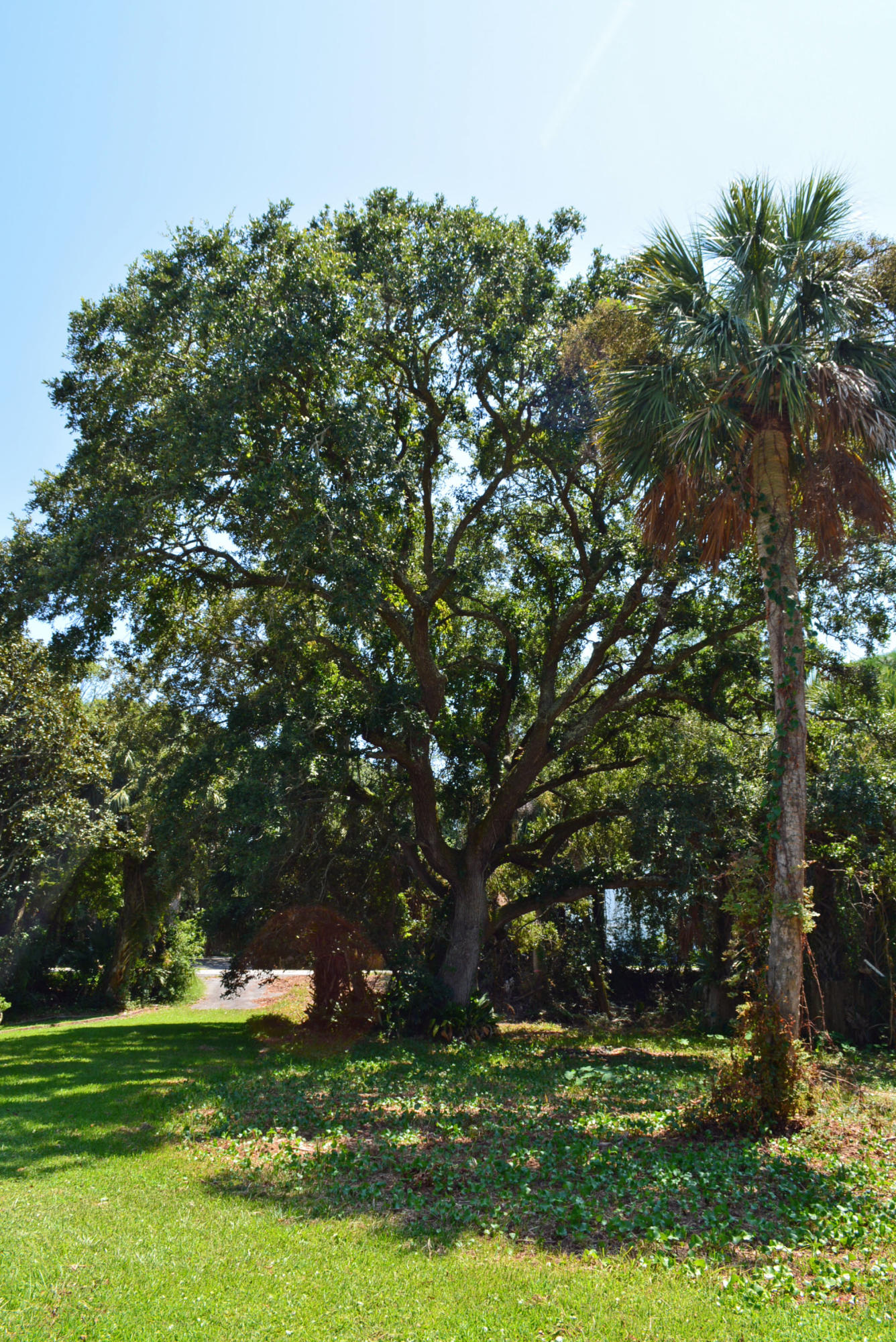 918 E Ashley Avenue Folly Beach, SC 29439