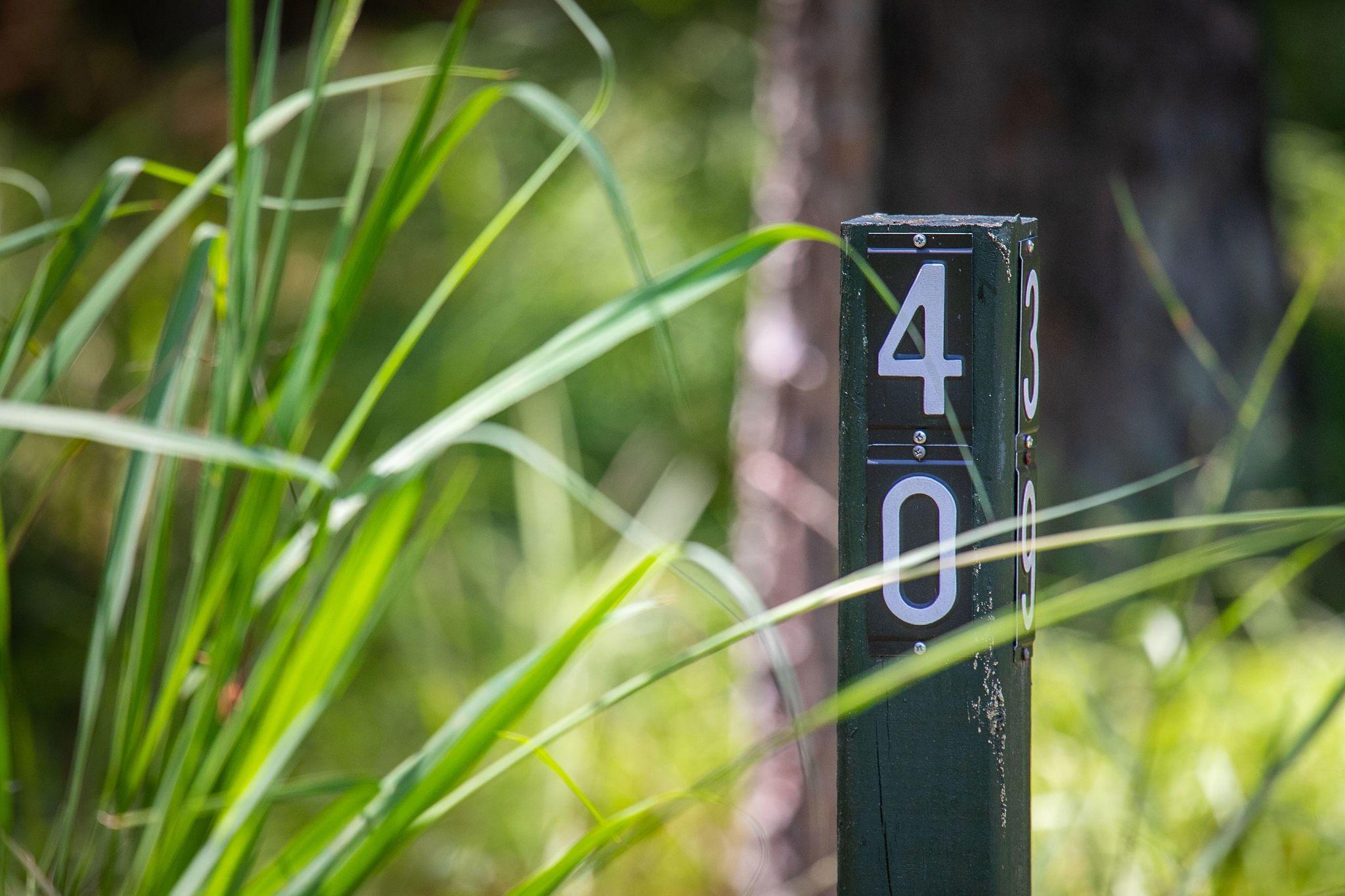 4105 Nesting Egret Drive Johns Island, SC 29455