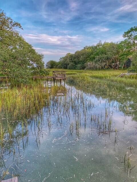 Bayview Farms Homes For Sale - 1313 Salt Marsh, Charleston, SC - 30