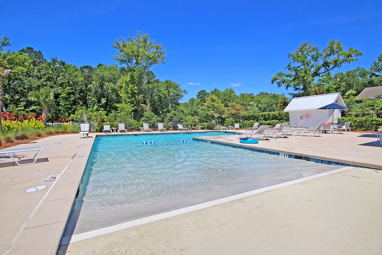 Tupelo Homes For Sale - 1309 Belgian Draft, Mount Pleasant, SC - 42