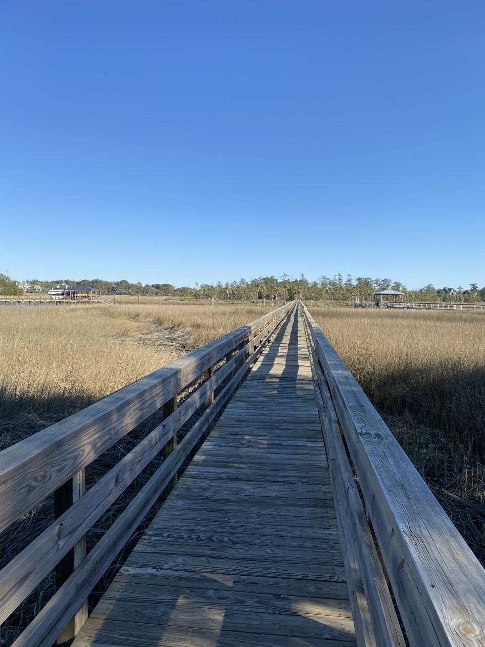 Beresford Creek Landing Homes For Sale - 1264 Blue Sky, Charleston, SC - 25