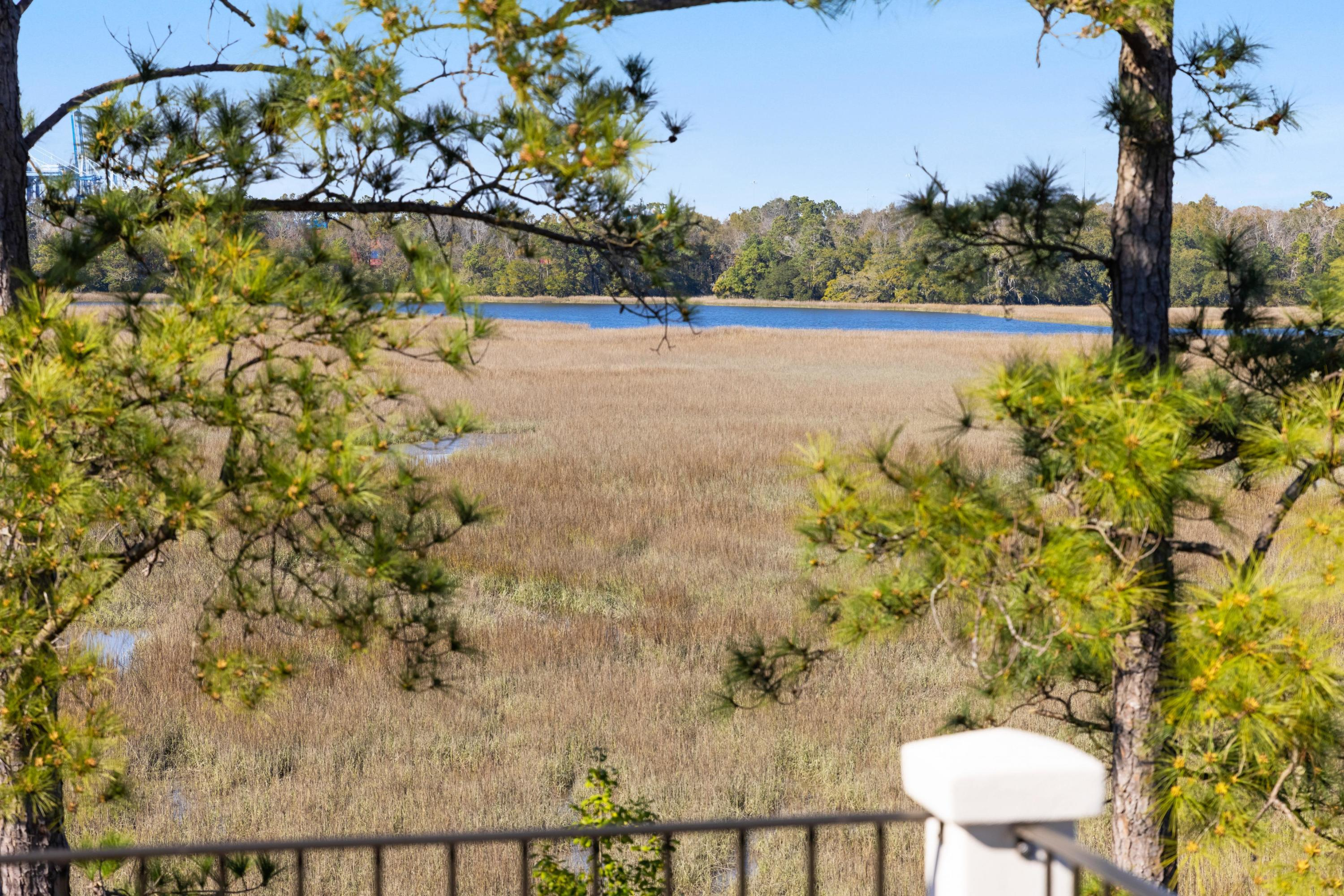 Ion Homes For Sale - 3 Duany, Mount Pleasant, SC - 51
