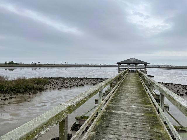Simmons Pointe Homes For Sale - 1551 Ben Sawyer, Mount Pleasant, SC - 4