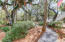 2 Forest Trail Court, Isle of Palms, SC 29451