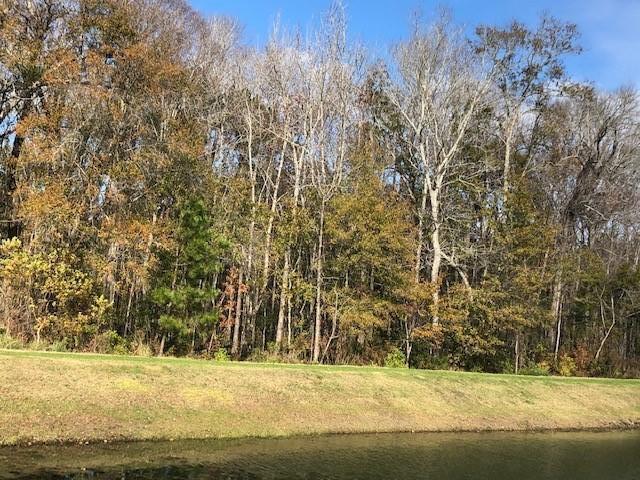 Fulton Park Homes For Sale - 1260 Max, Mount Pleasant, SC - 33