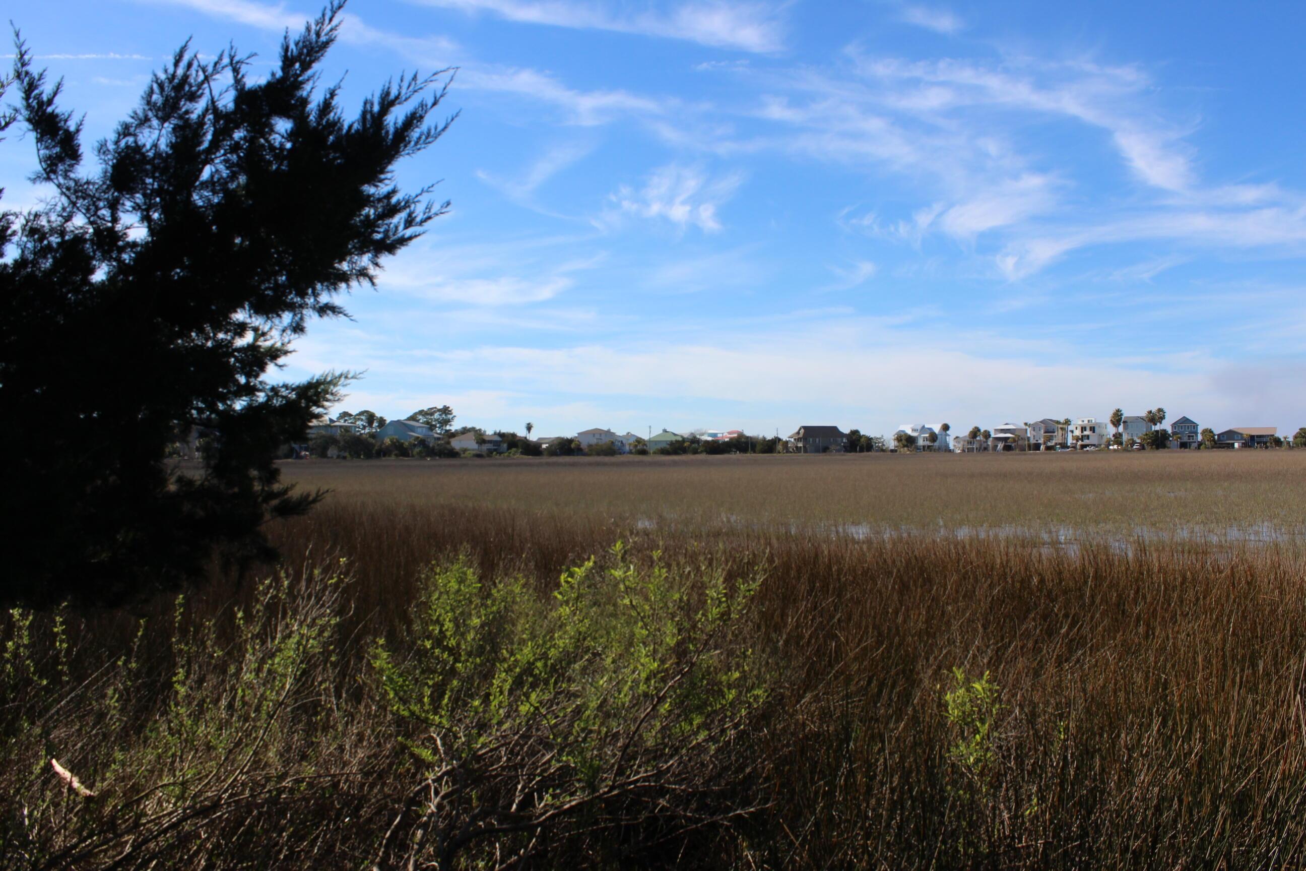 1405 Jungle Road Edisto Beach, SC 29438