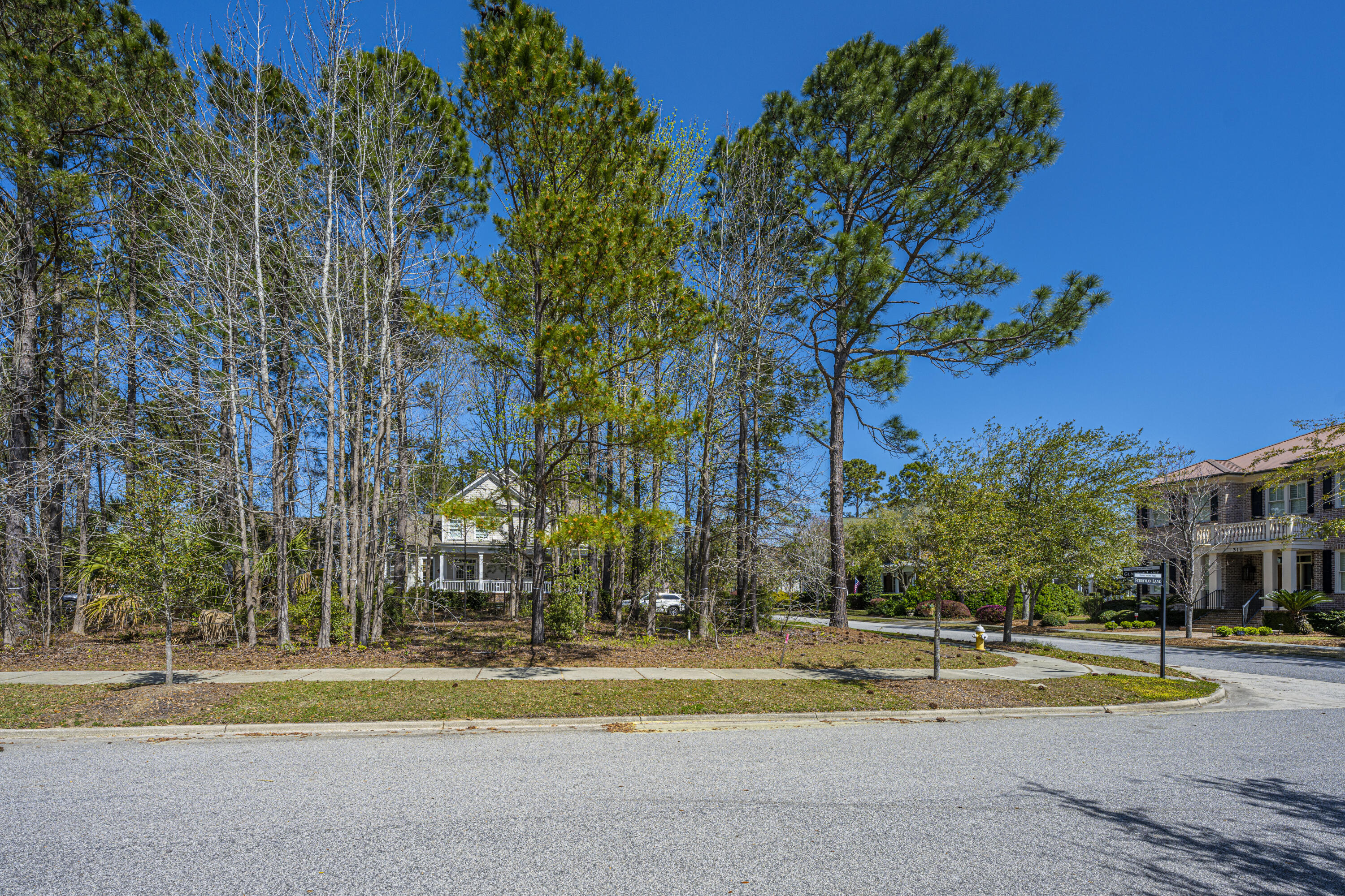 Daniel Island Park Lots For Sale - 313 Gunboat, Charleston, SC - 21