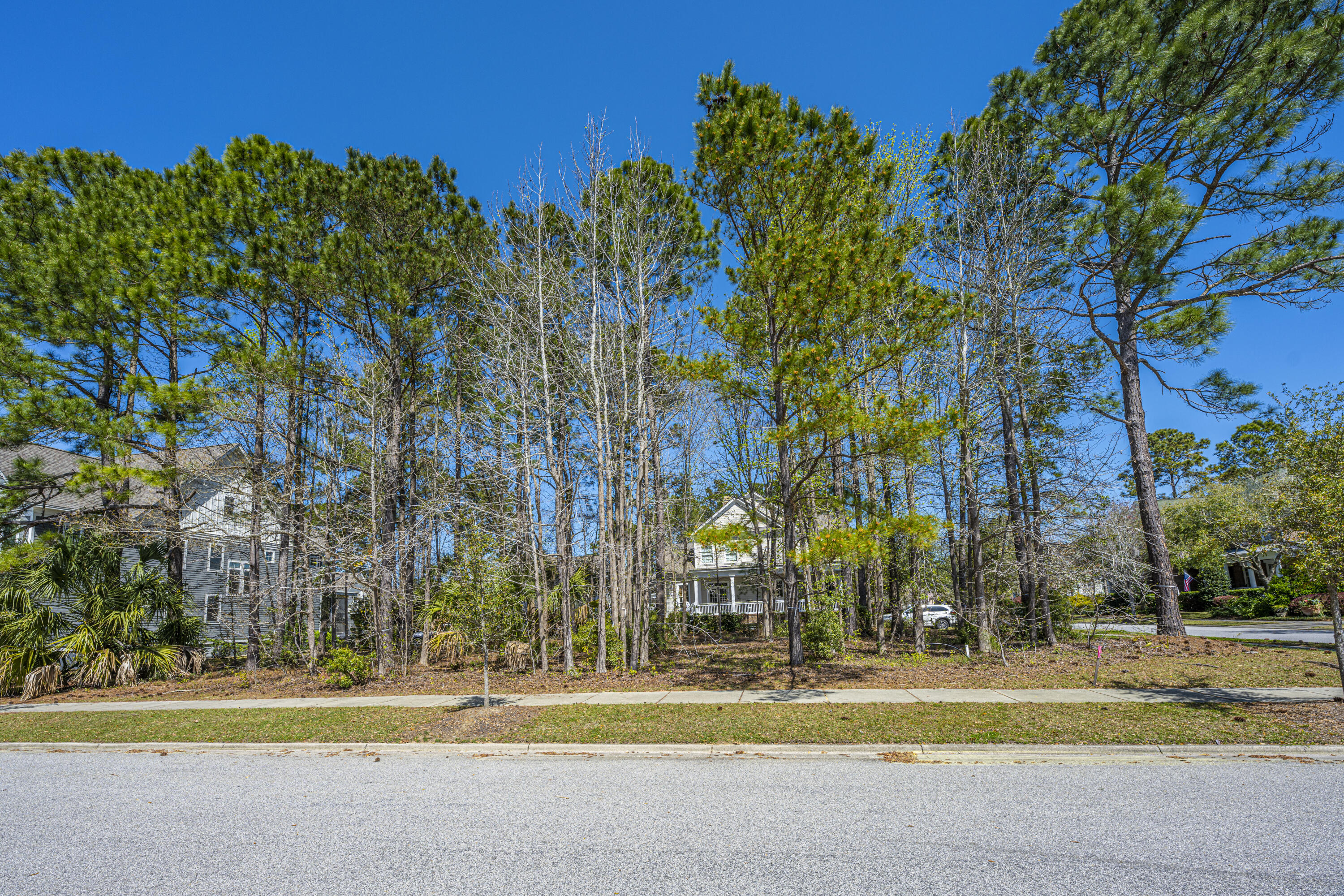 Daniel Island Park Lots For Sale - 313 Gunboat, Charleston, SC - 22
