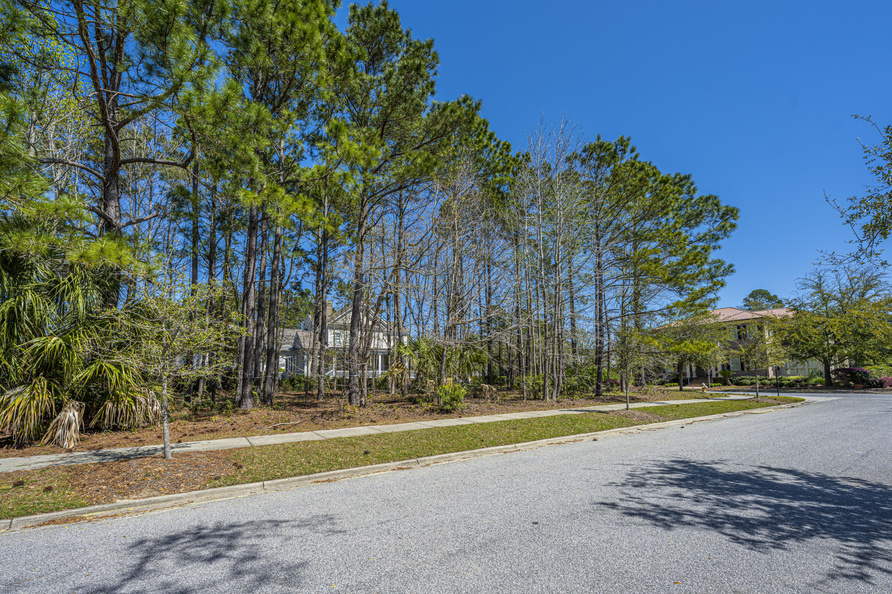 Daniel Island Park Lots For Sale - 313 Gunboat, Charleston, SC - 26