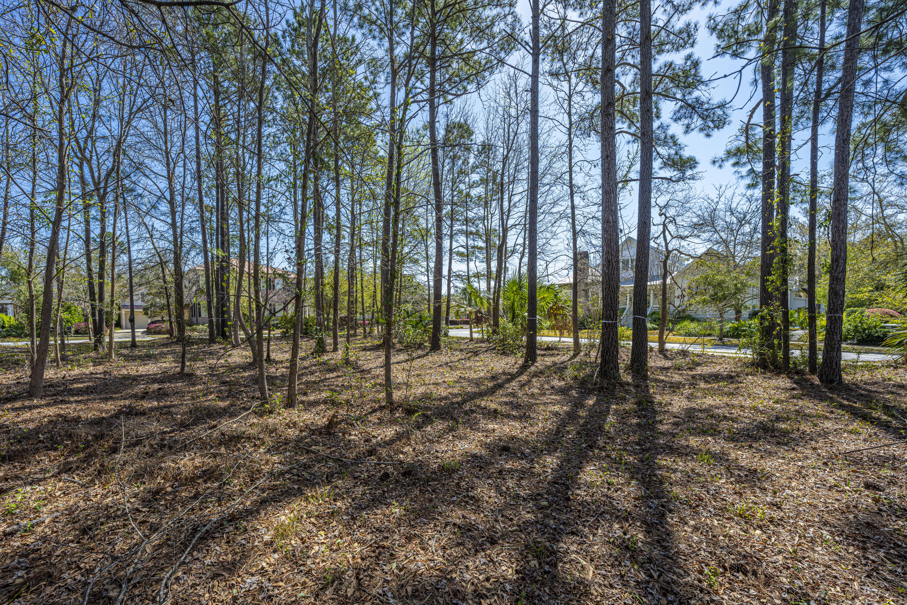 Daniel Island Park Lots For Sale - 313 Gunboat, Charleston, SC - 12