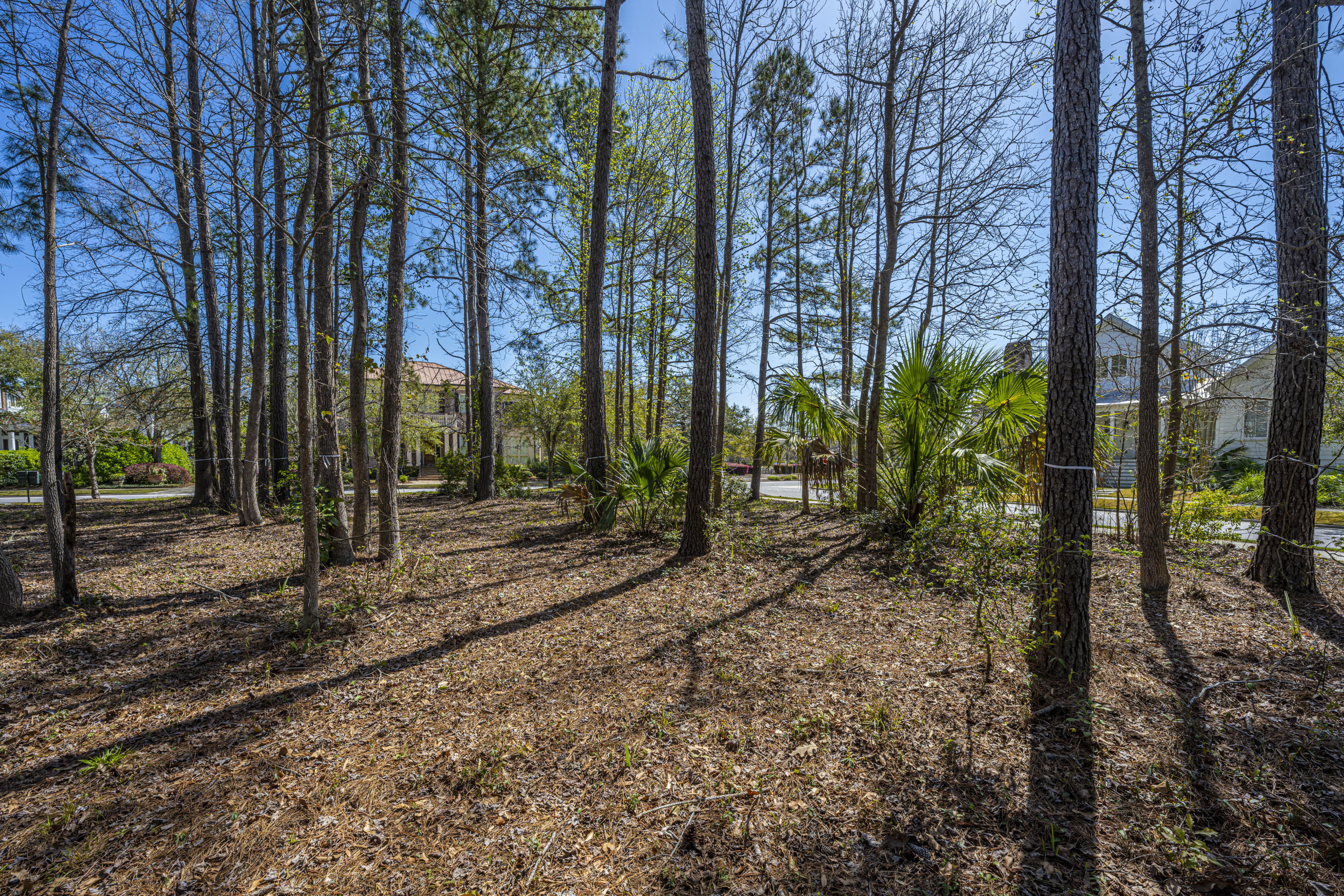 Daniel Island Park Lots For Sale - 313 Gunboat, Charleston, SC - 11