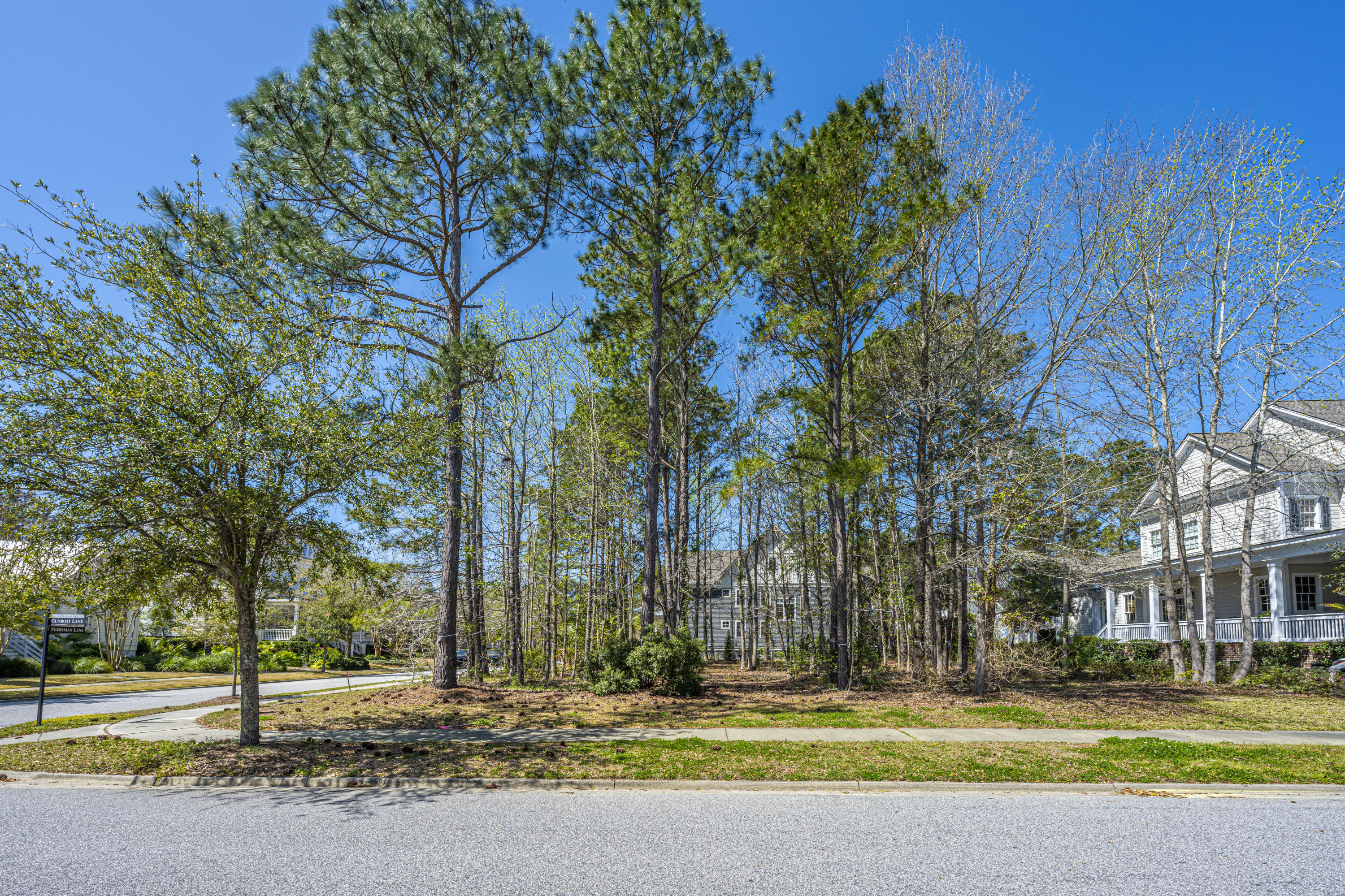 Daniel Island Park Lots For Sale - 313 Gunboat, Charleston, SC - 14