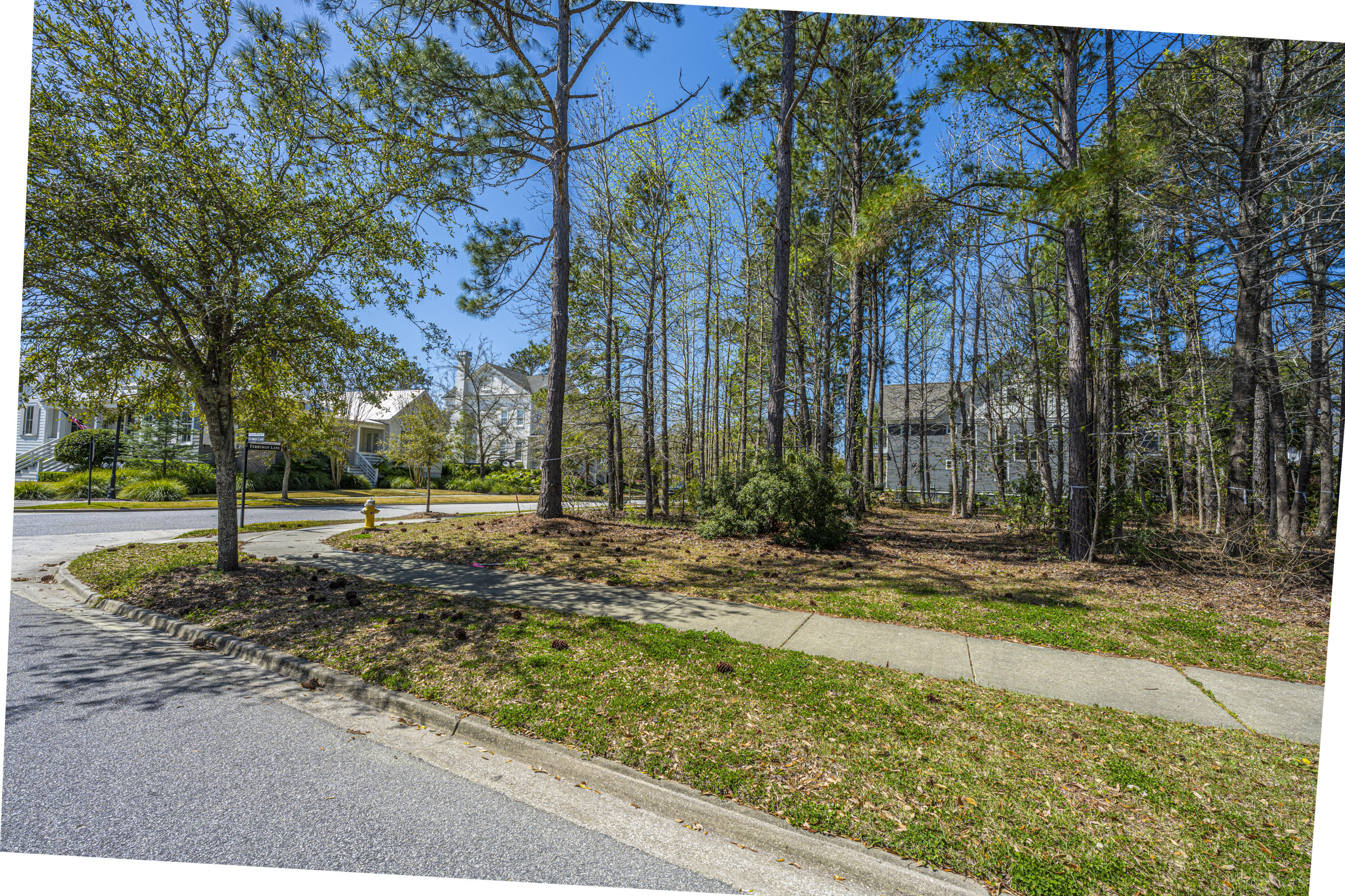 Daniel Island Park Lots For Sale - 313 Gunboat, Charleston, SC - 24
