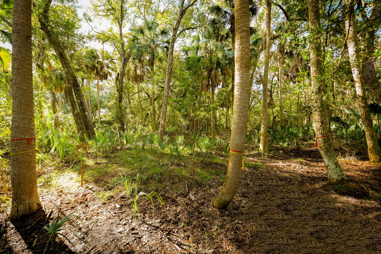 Seabrook Island Lots For Sale - 3137 Privateer Creek, Seabrook Island, SC - 24