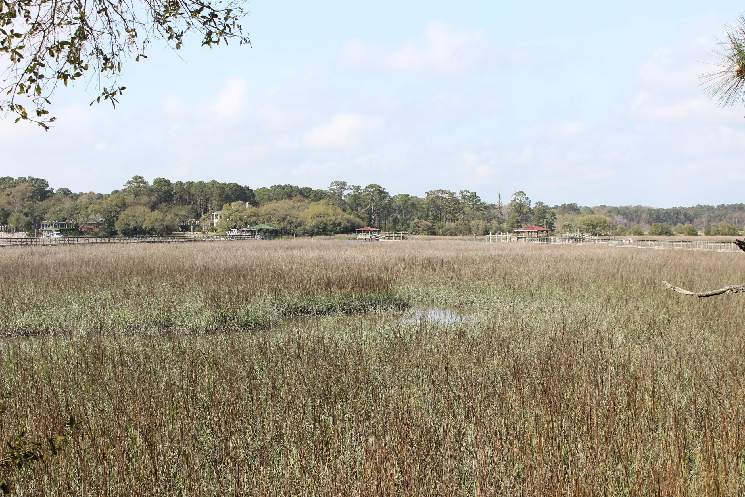 1479 Marsh Bluff Court Edisto Island, SC 29438