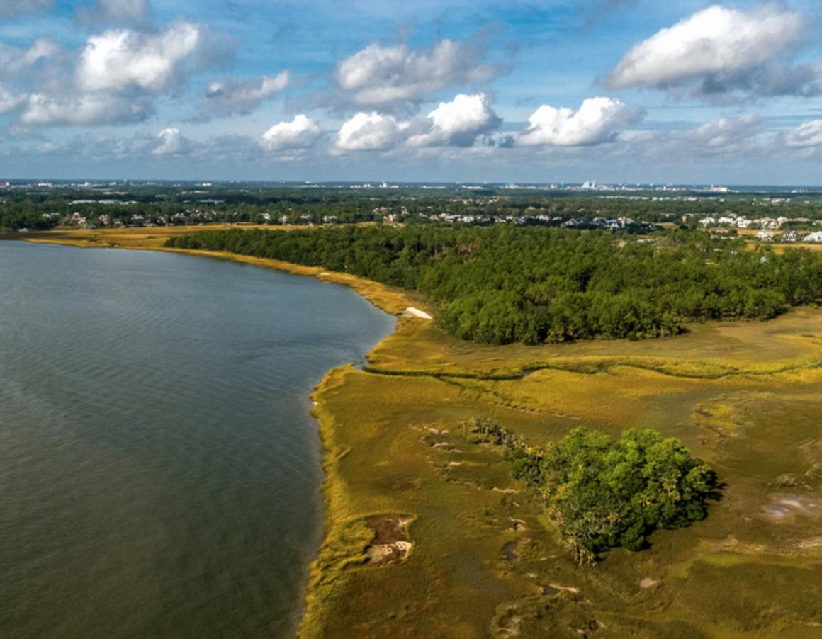 Daniel Island Lots For Sale - 364 Bayley, Charleston, SC - 24