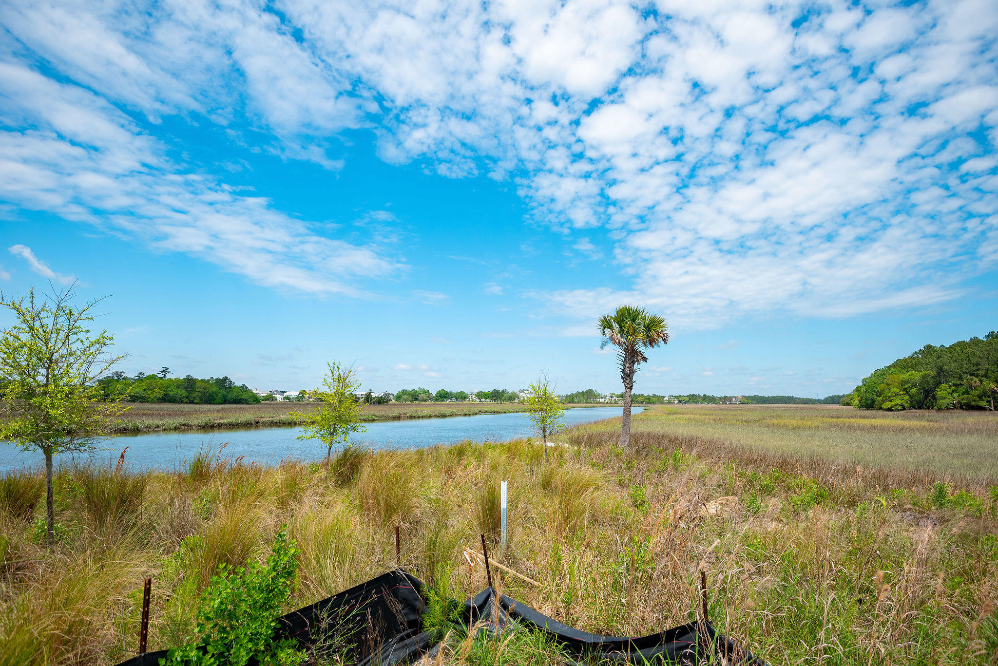 Daniel Island Lots For Sale - 364 Bayley, Charleston, SC - 25