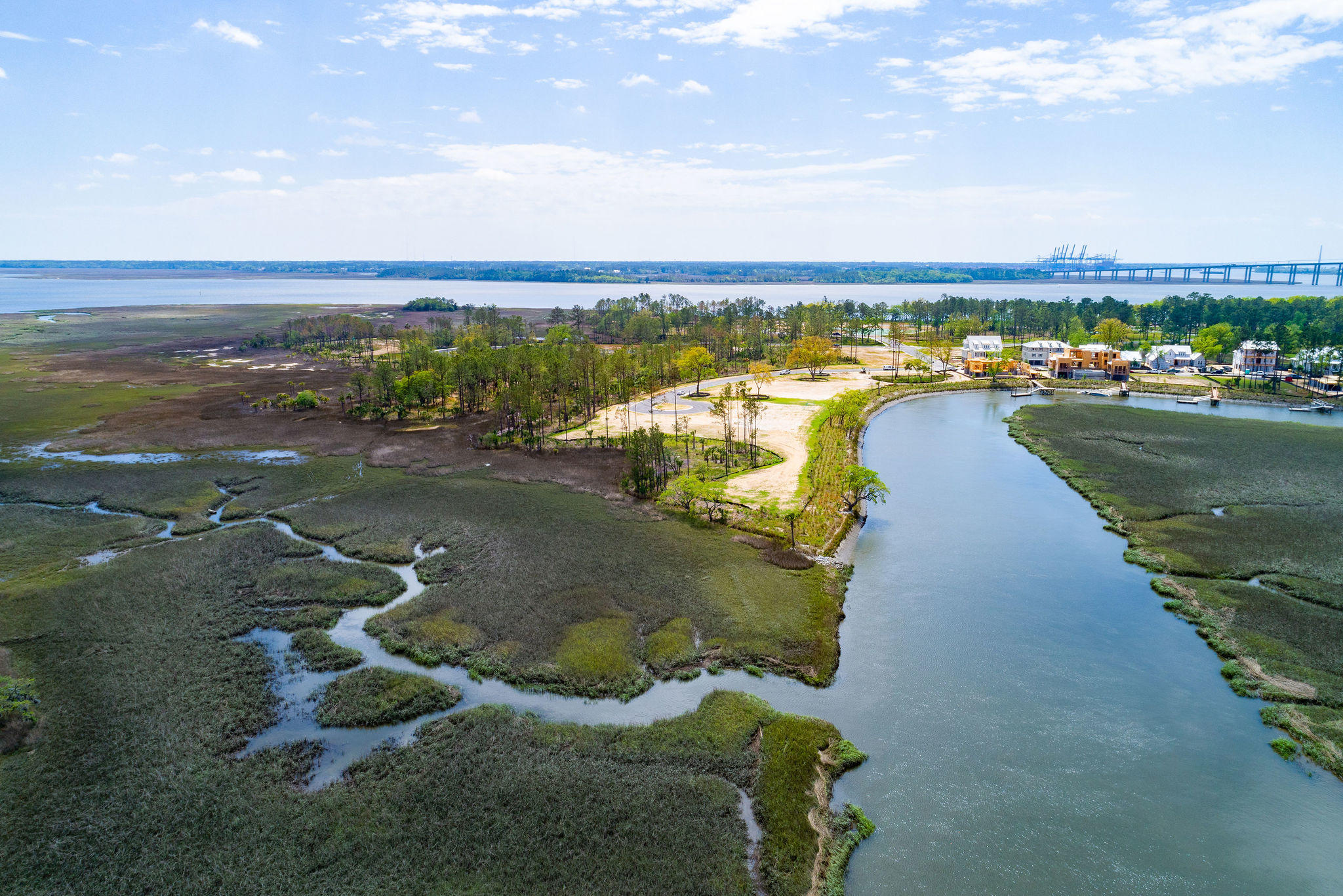 Daniel Island Lots For Sale - 364 Bayley, Charleston, SC - 19
