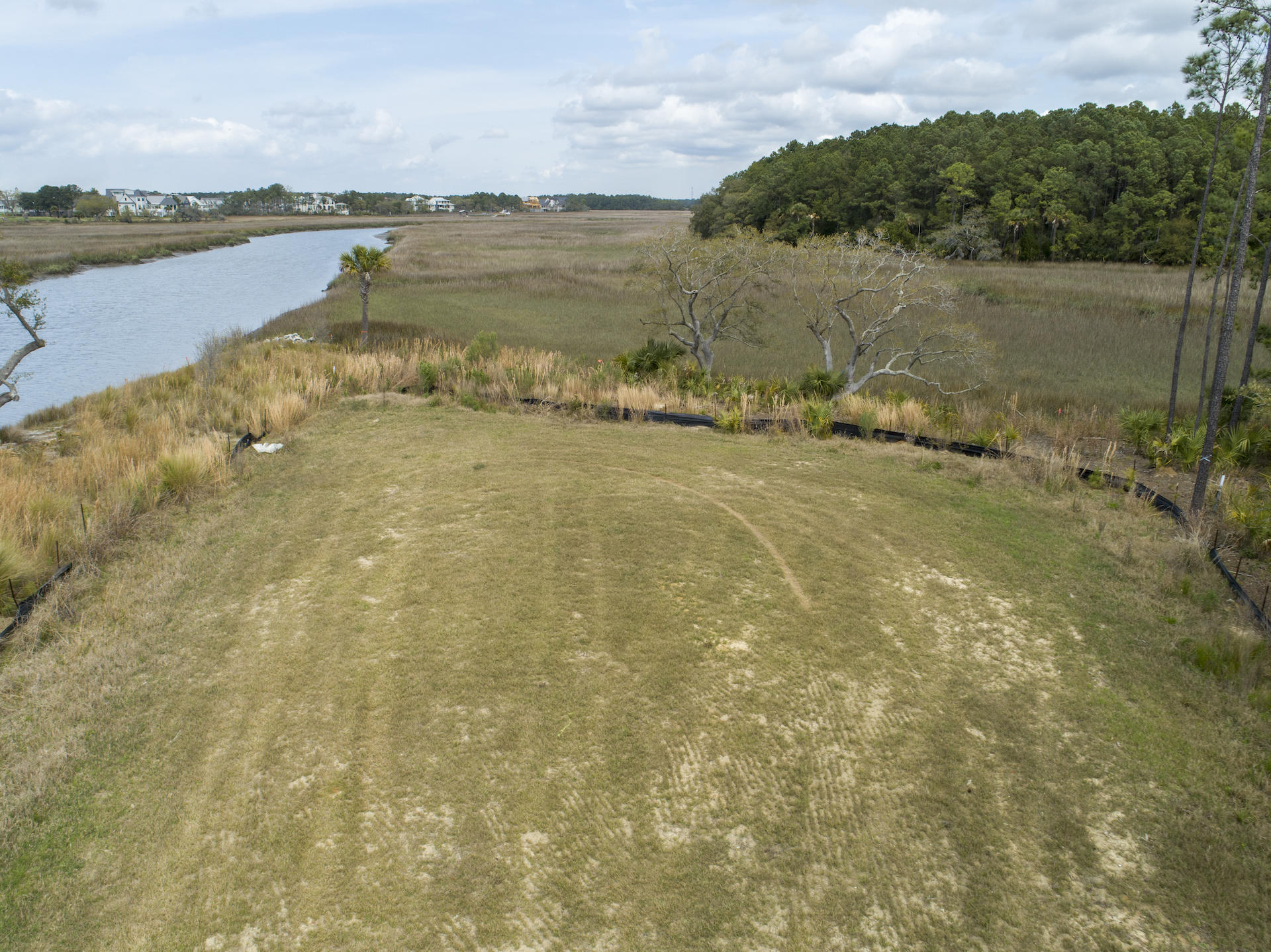 Daniel Island Lots For Sale - 364 Bayley, Charleston, SC - 41