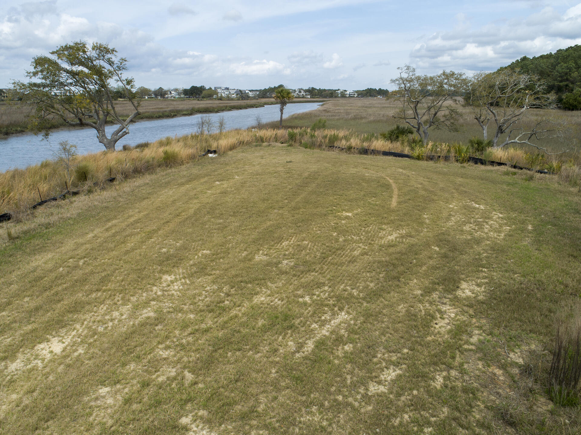 Daniel Island Lots For Sale - 364 Bayley, Charleston, SC - 4