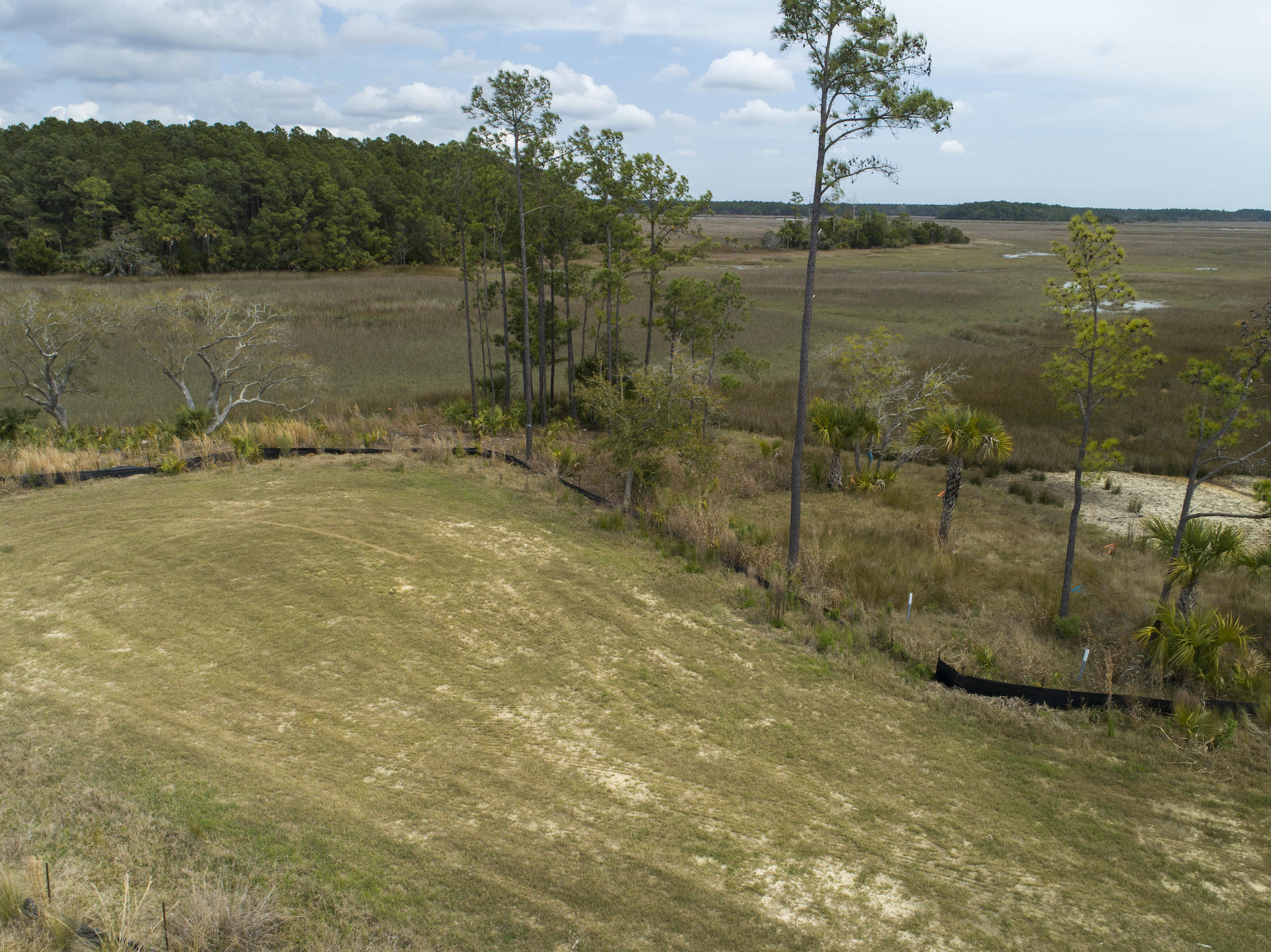 Daniel Island Lots For Sale - 364 Bayley, Charleston, SC - 1