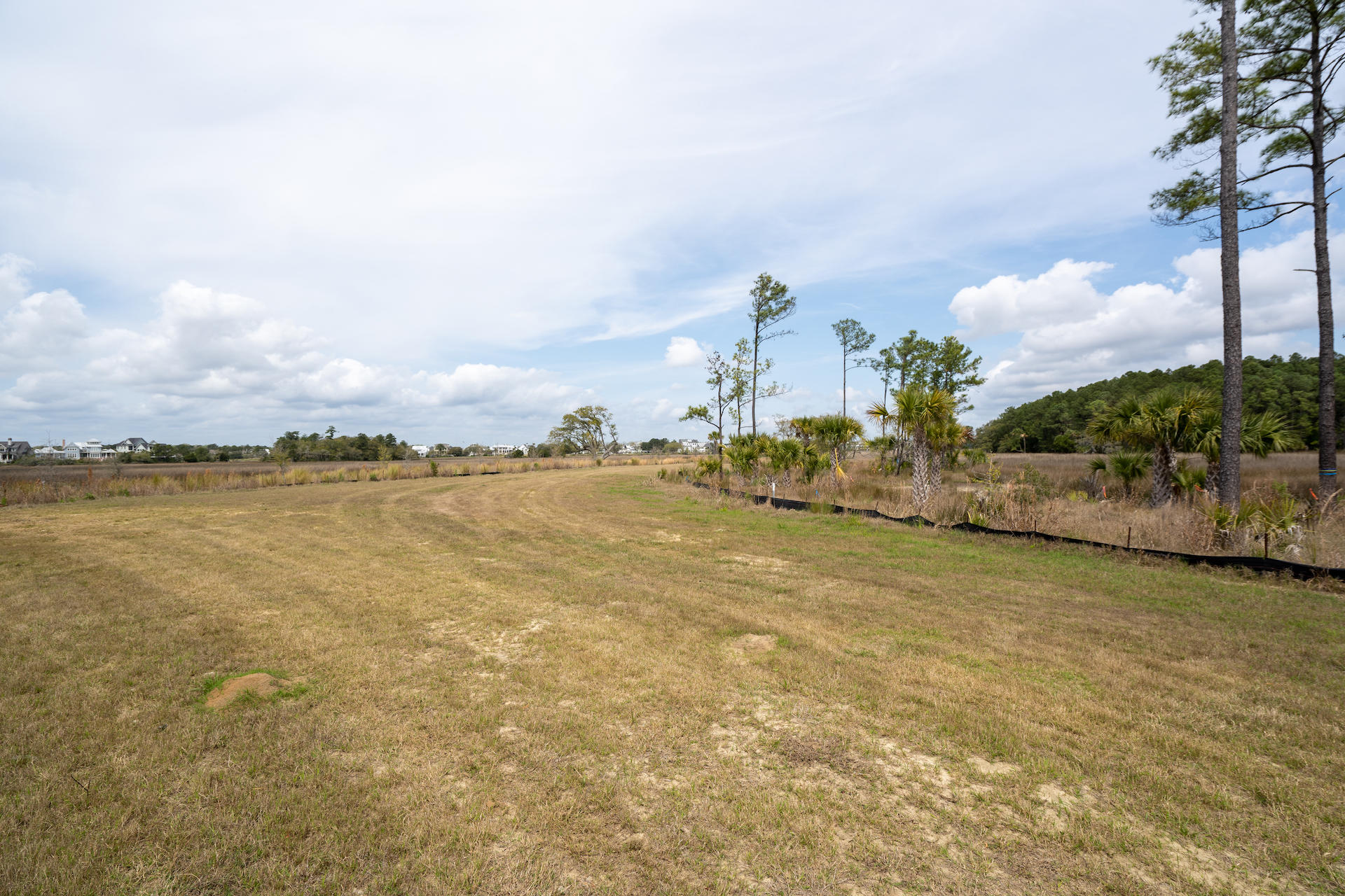 Daniel Island Lots For Sale - 364 Bayley, Charleston, SC - 51