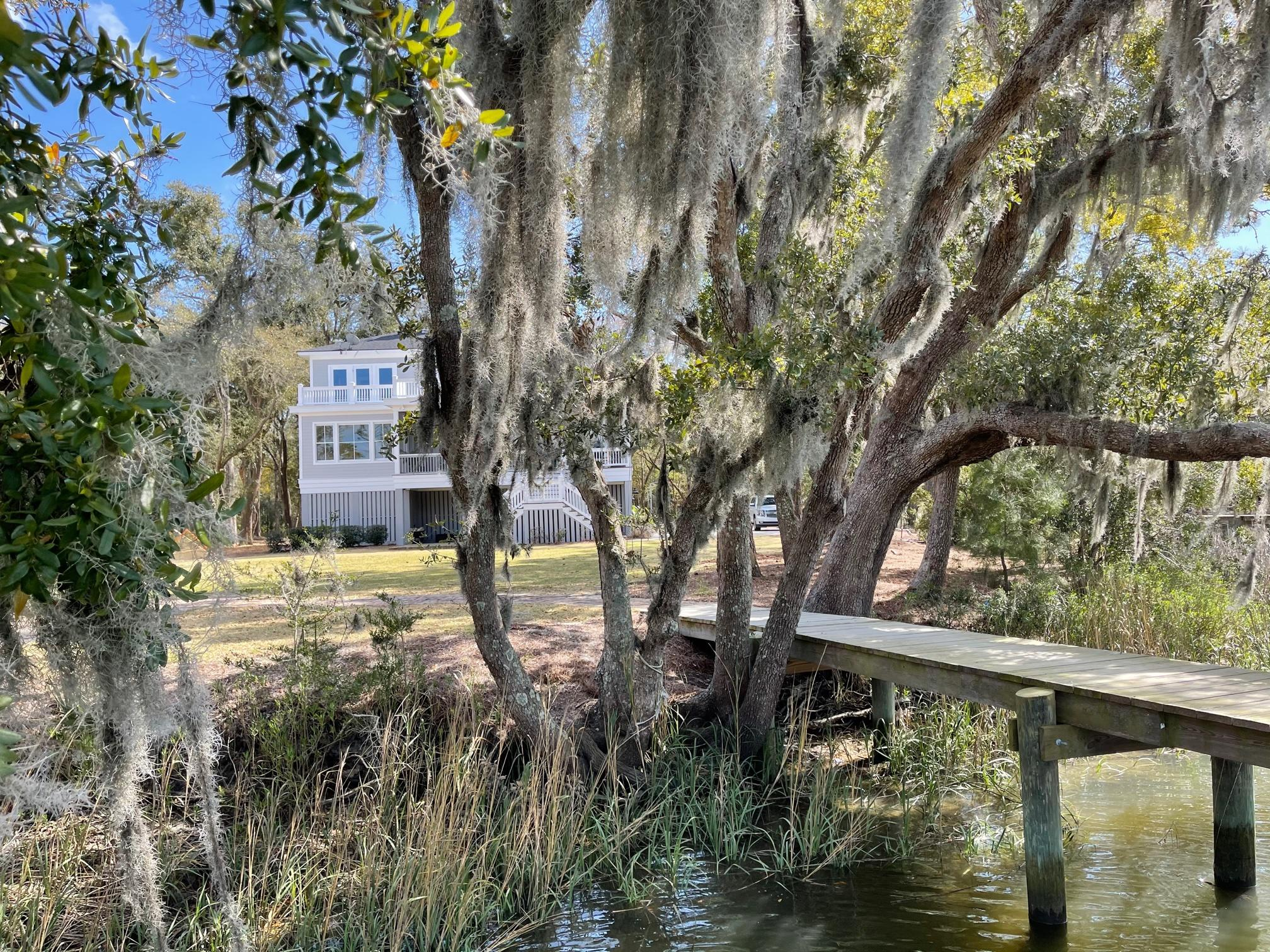 Belle Terre Homes For Sale - 584 Parrot Point, Charleston, SC - 15