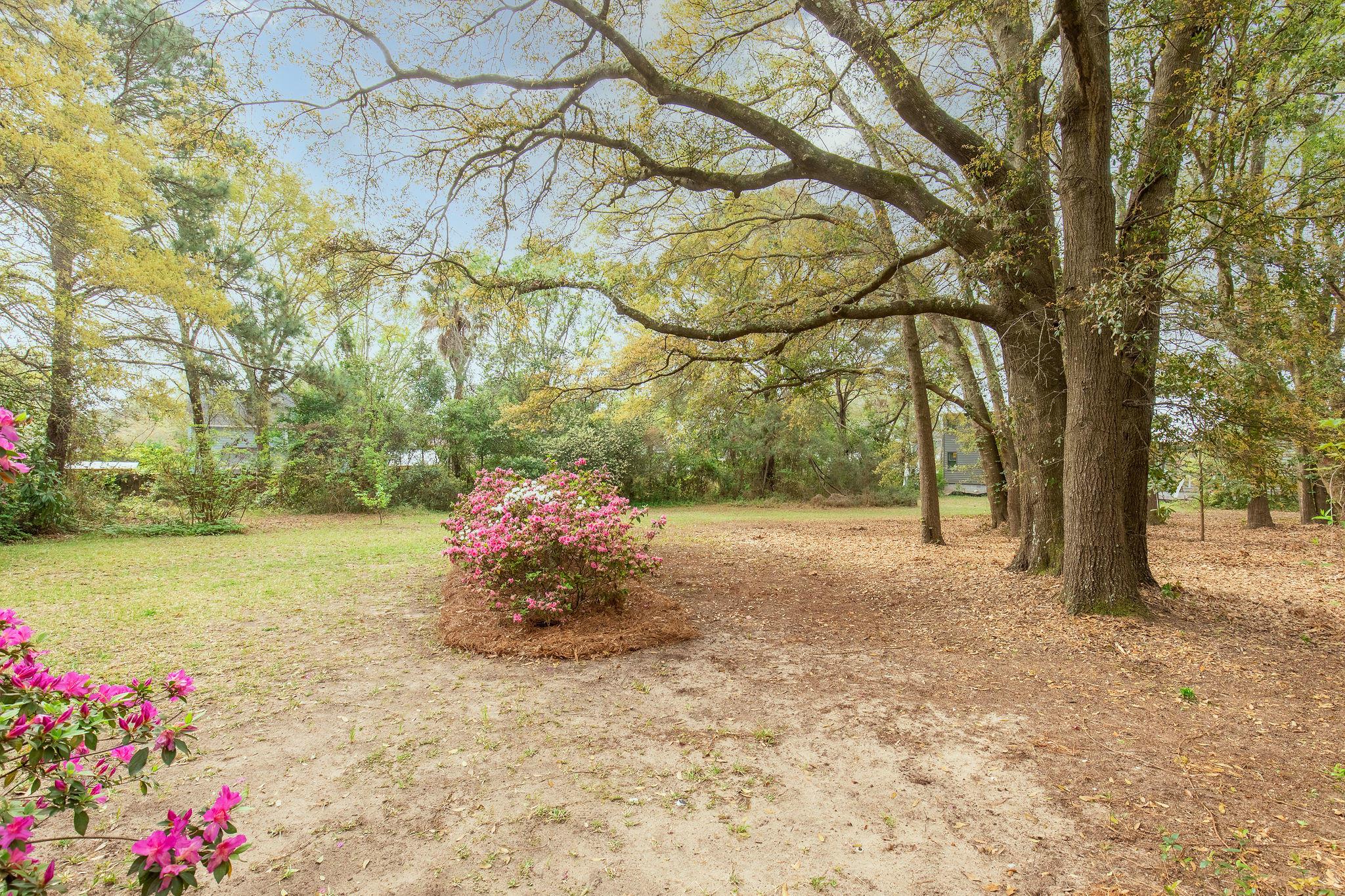 Old Mt Pleasant Homes For Sale - 1417 Edwards, Mount Pleasant, SC - 44
