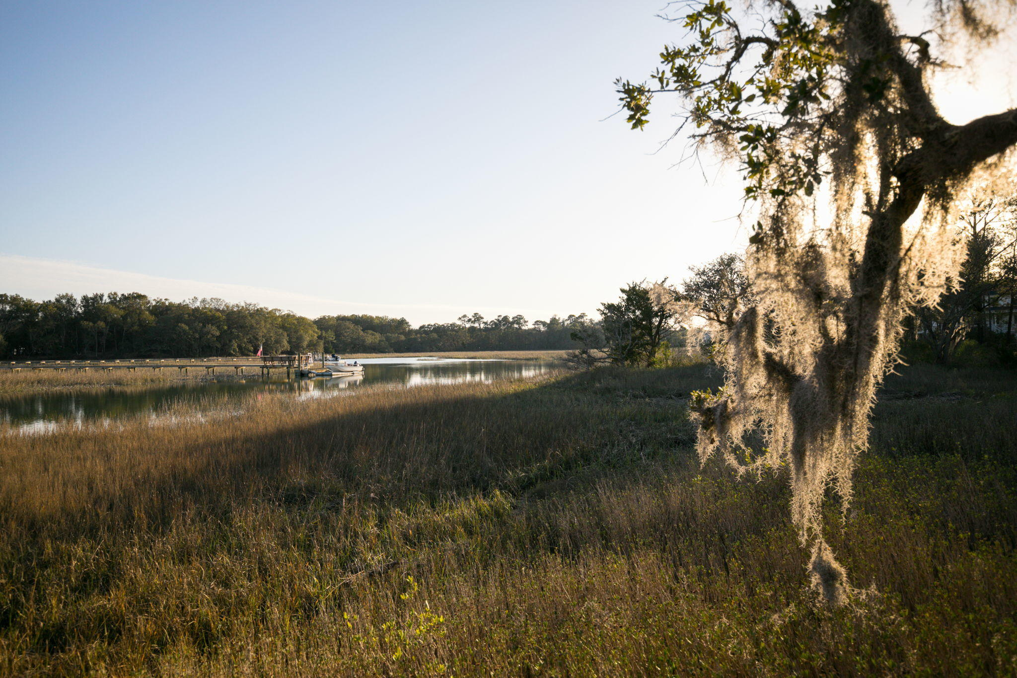 1048 Hills Plantation Drive Charleston, SC 29412