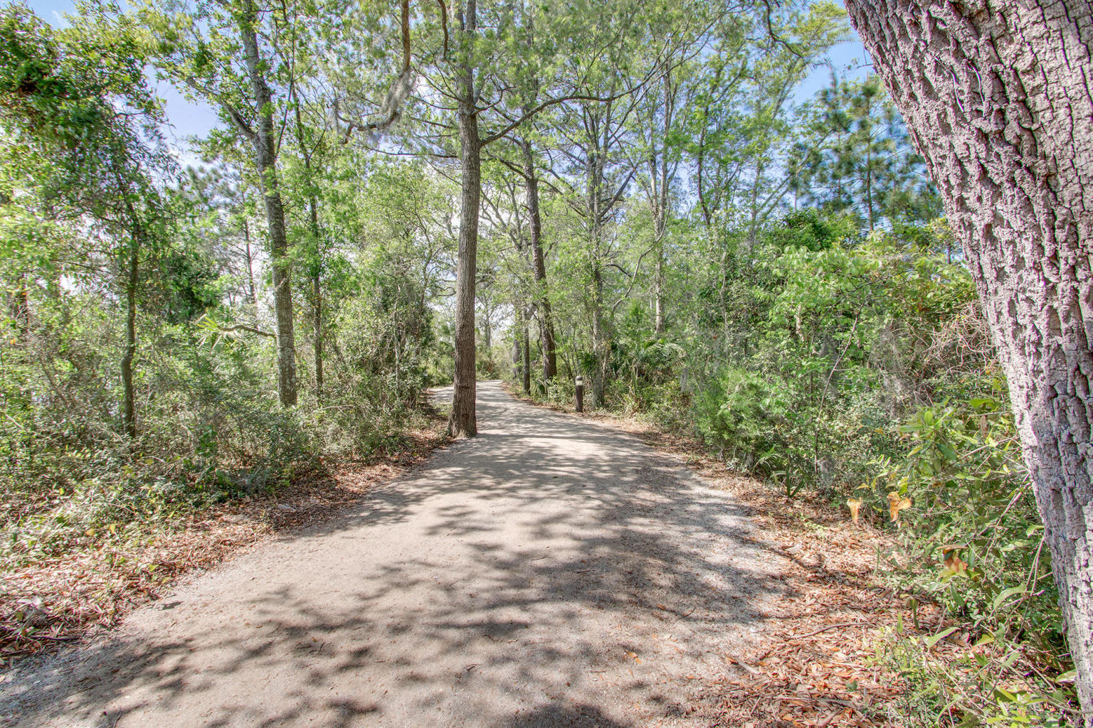 130 River Landing Drive UNIT #3114 Charleston, SC 29492