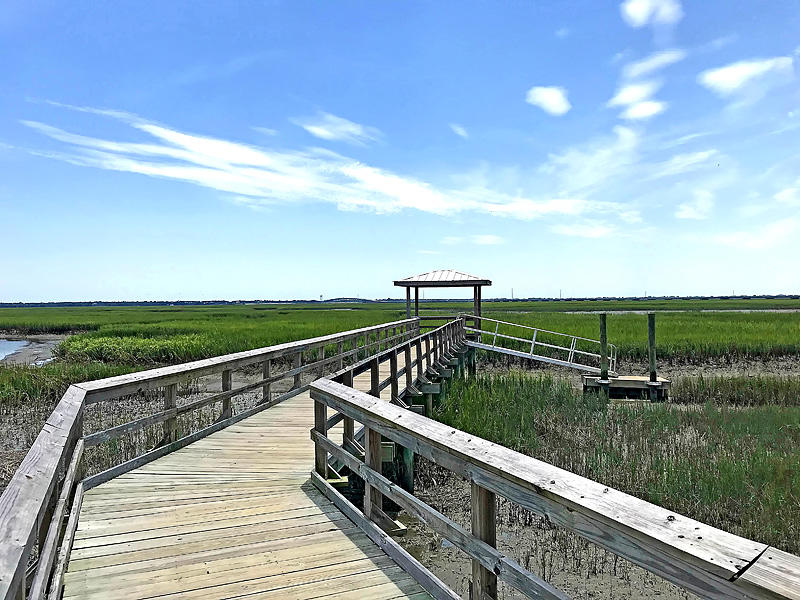 Oyster Point Homes For Sale - 1472 Red Tide, Mount Pleasant, SC - 29