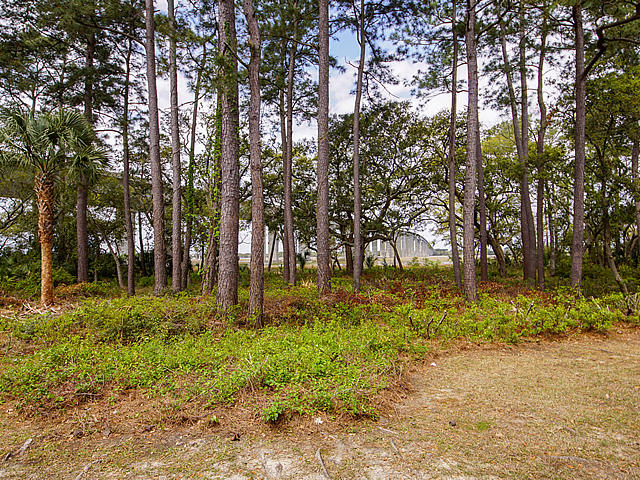 Etiwan Pointe Homes For Sale - 88 Salty Tide, Mount Pleasant, SC - 21