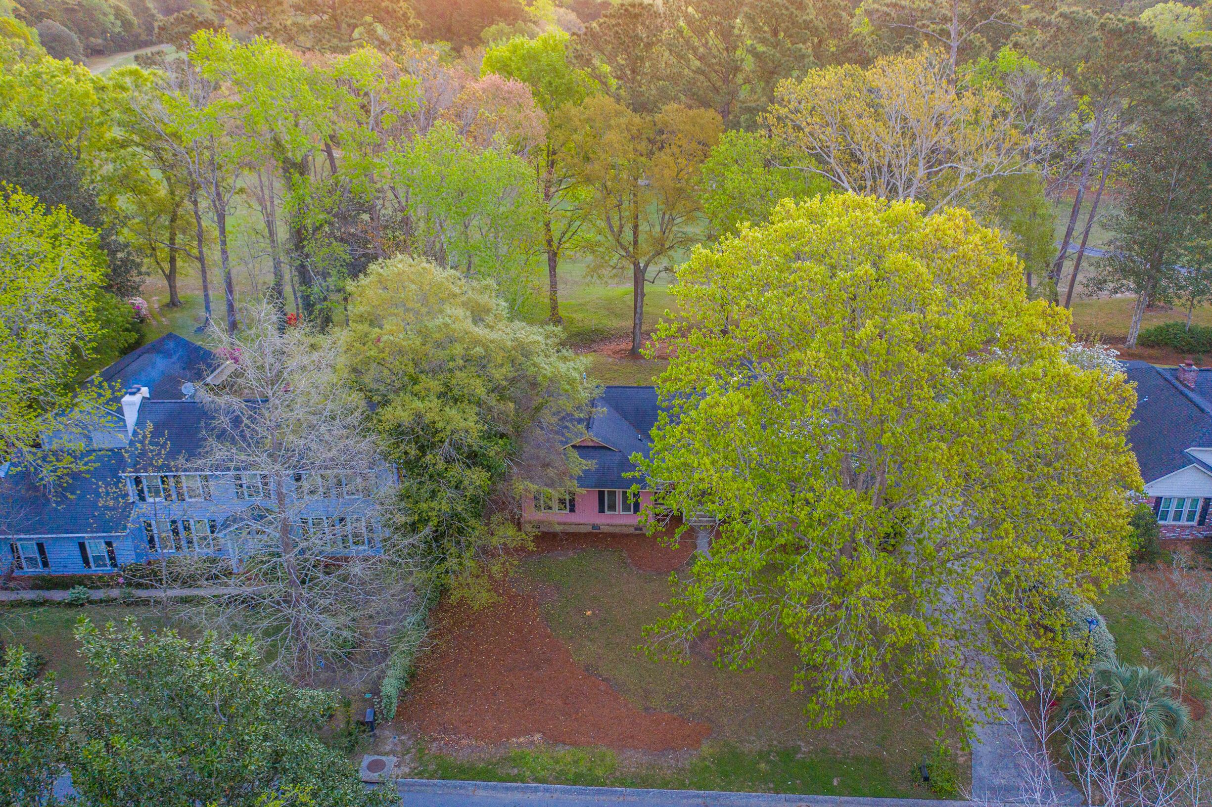 Snee Farm Homes For Sale - 1047 Royalist, Mount Pleasant, SC - 38
